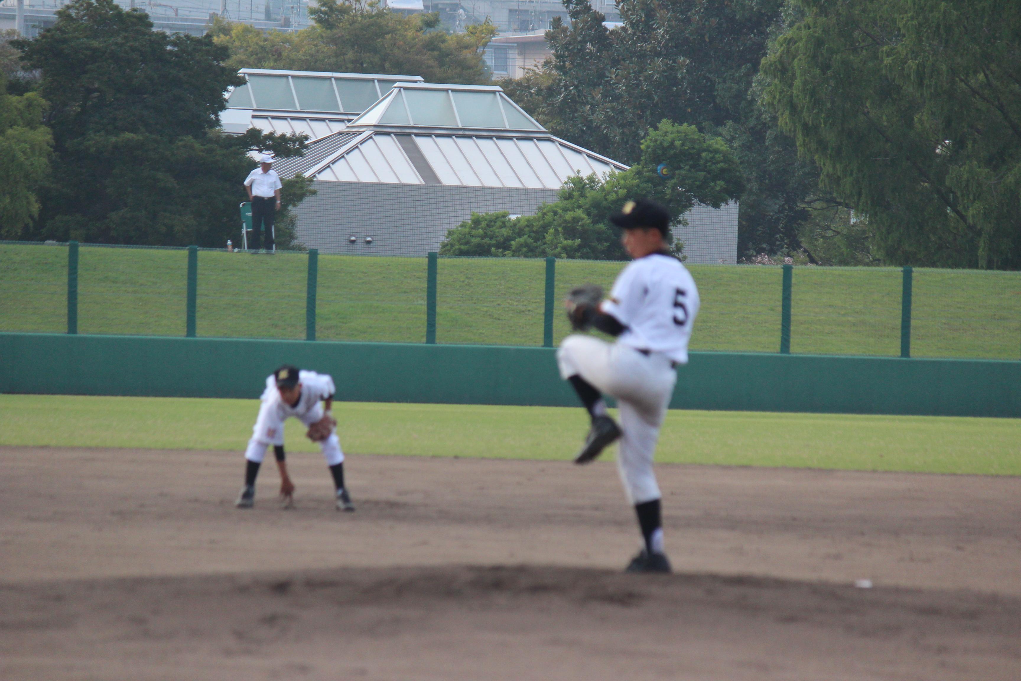 野球 (342)