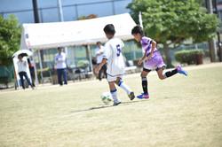 mini_soccer (525)