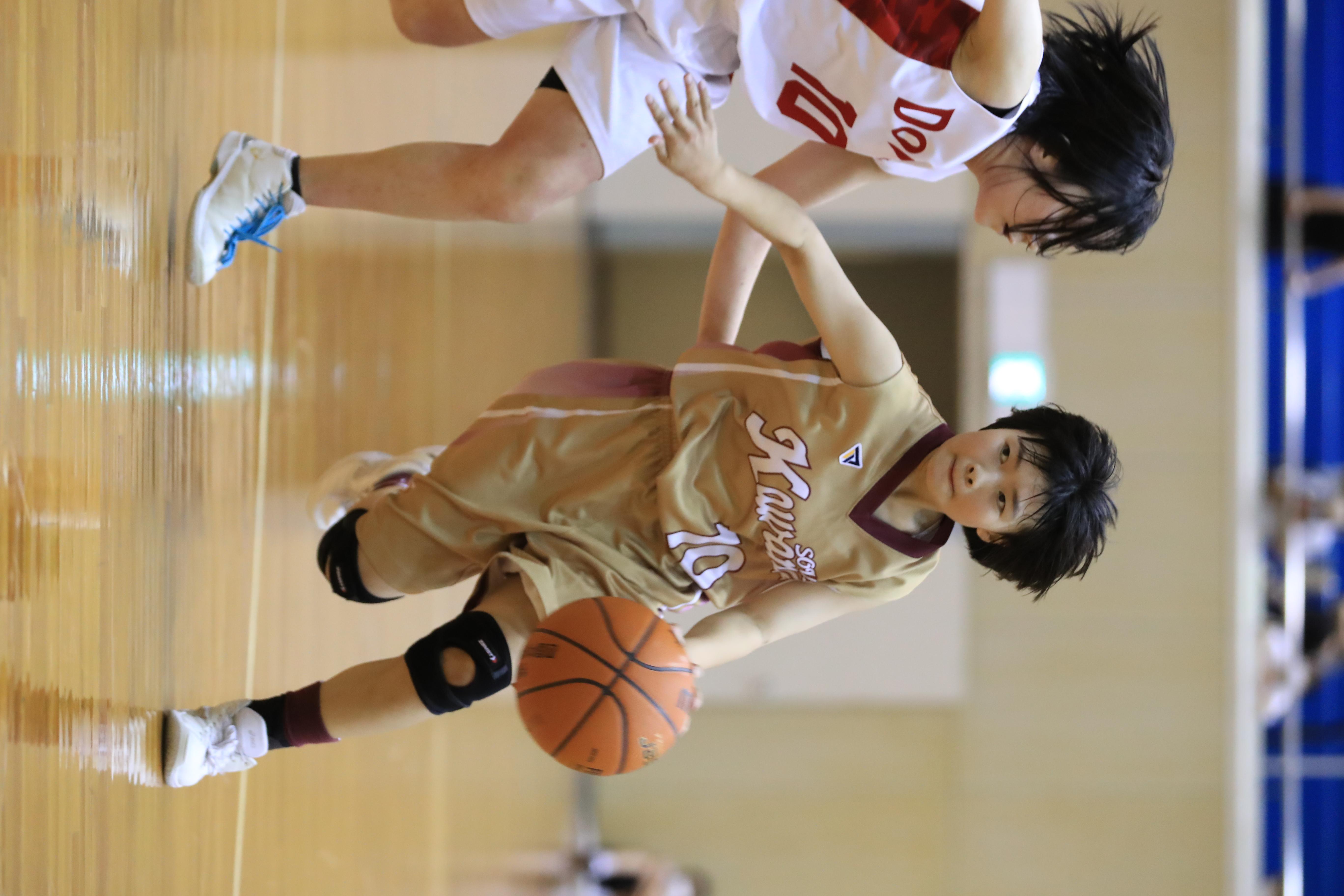 バスケット (639)