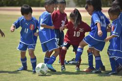 mini_soccer (685)