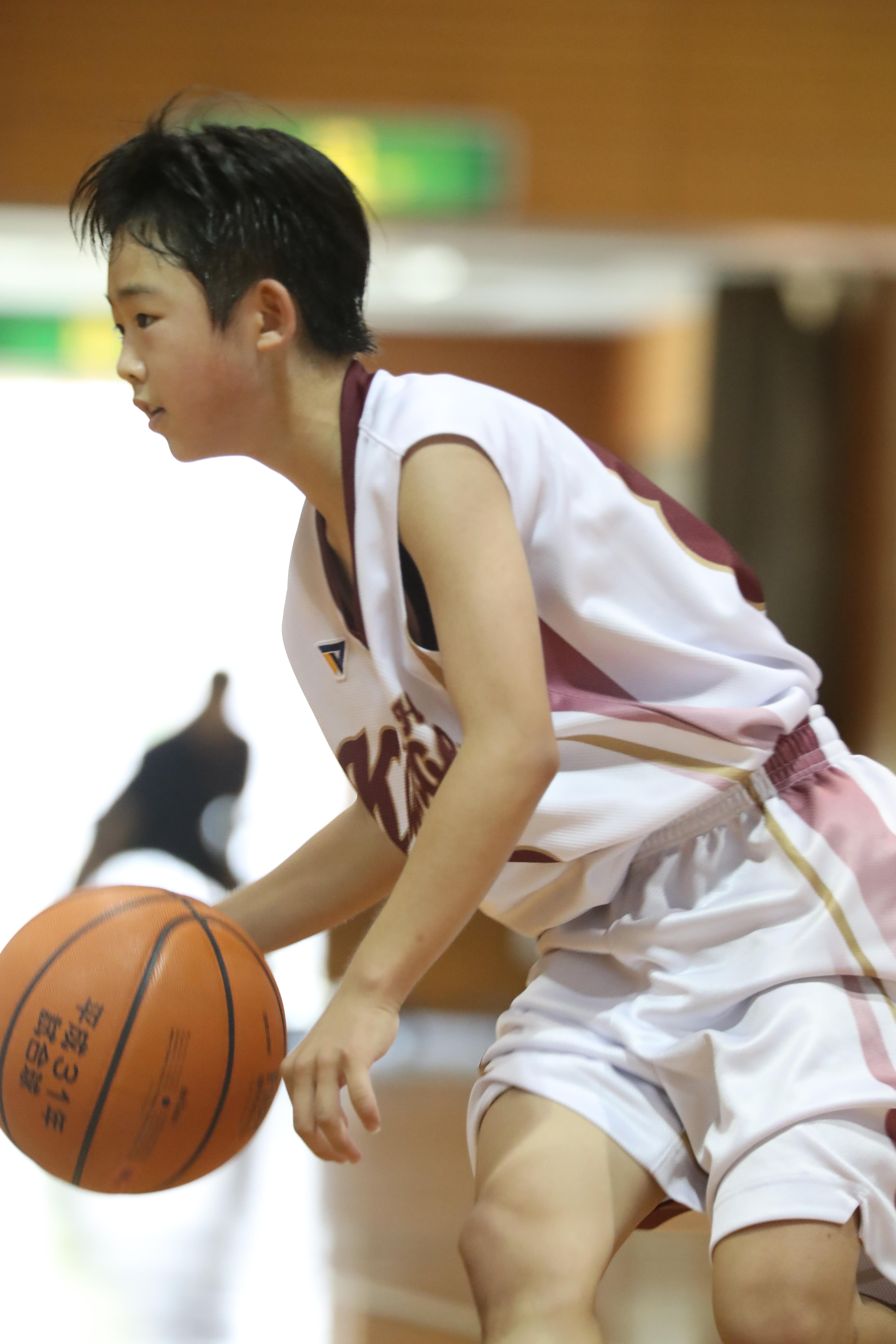 バスケット (104)