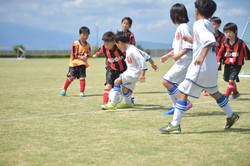 mini_soccer (331)