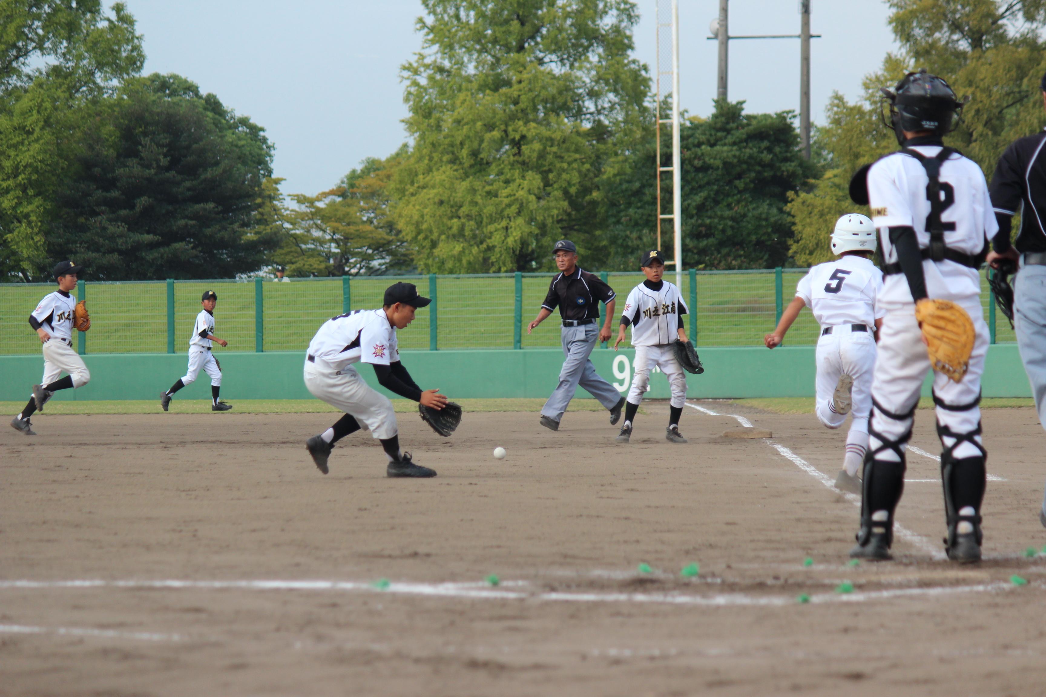 野球 (384)