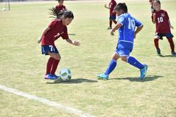 mini_soccer (508)