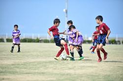 mini_soccer (276)