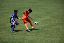 サッカー (342)