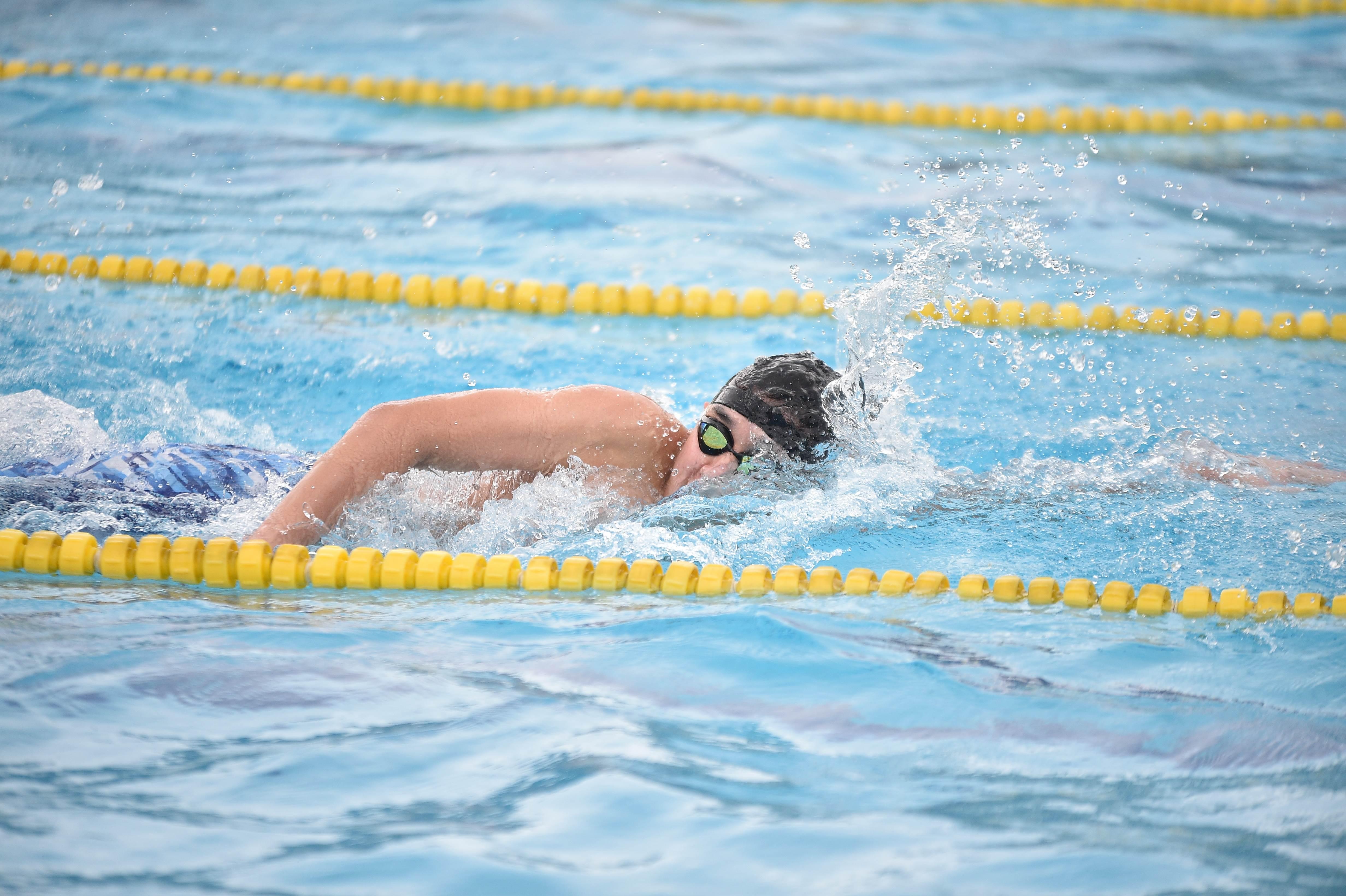 水泳 (105)