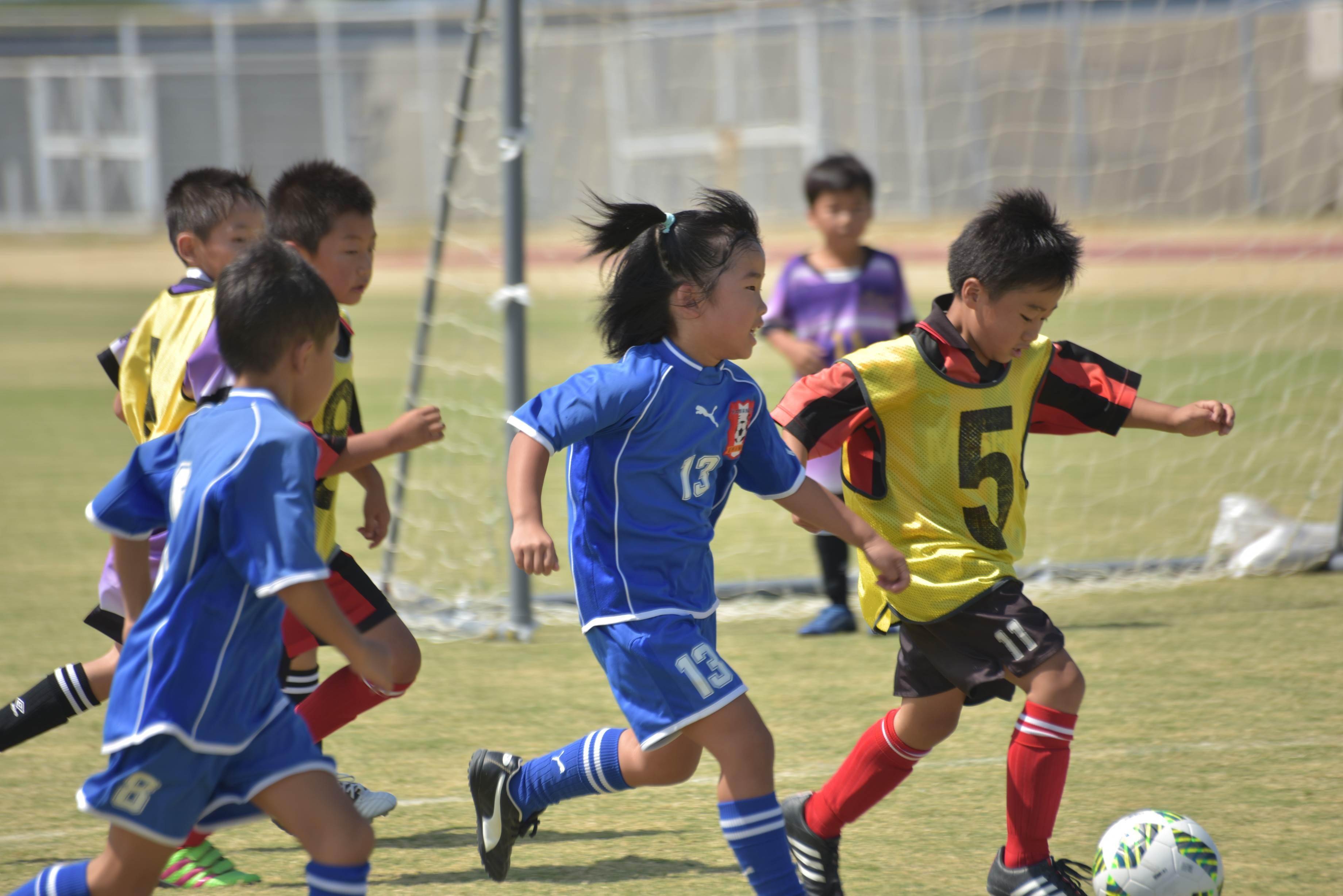 mini_soccer (641)