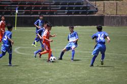 サッカー (801)