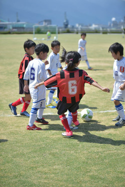 mini_soccer (388)