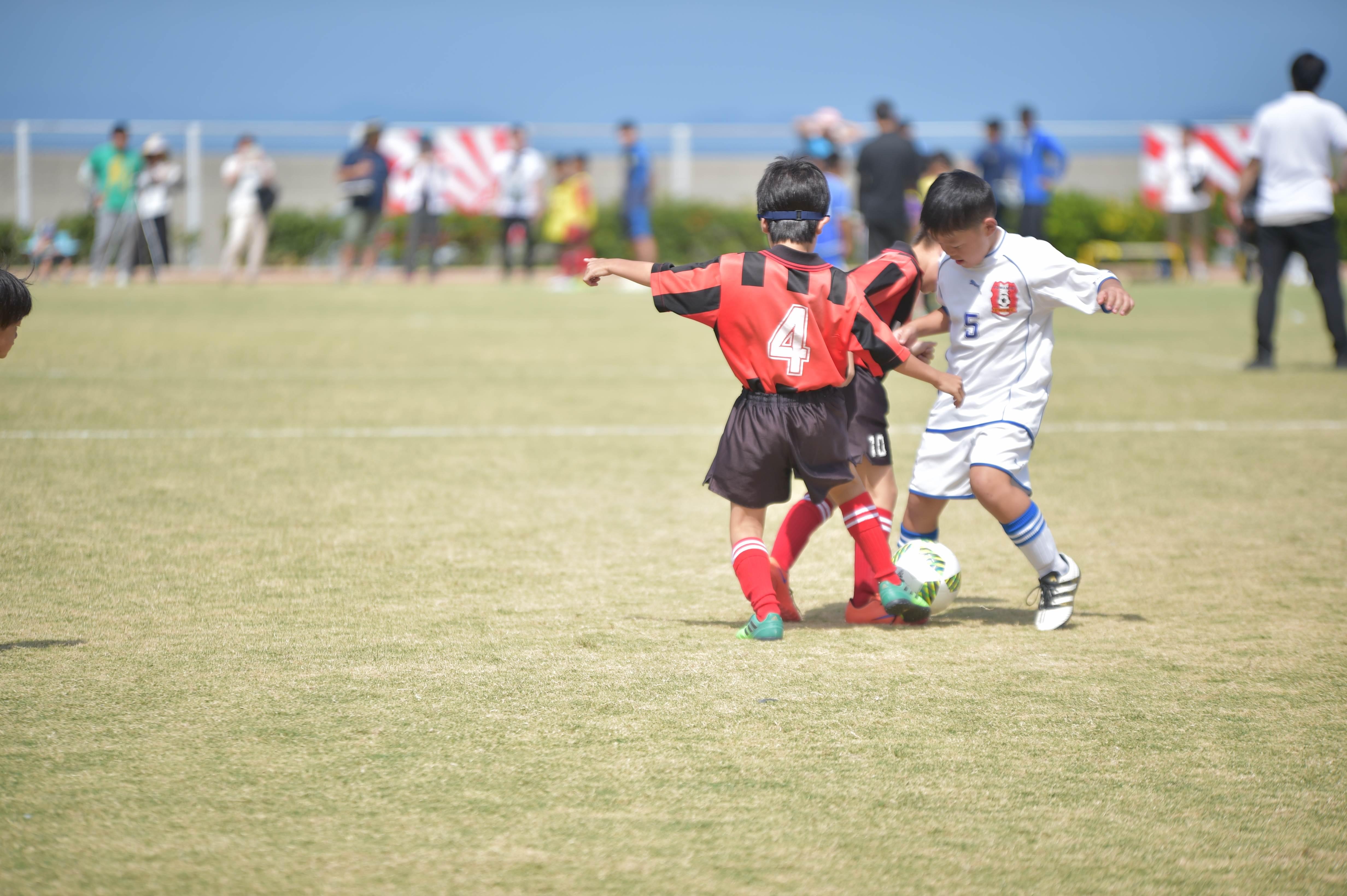 mini_soccer (306)
