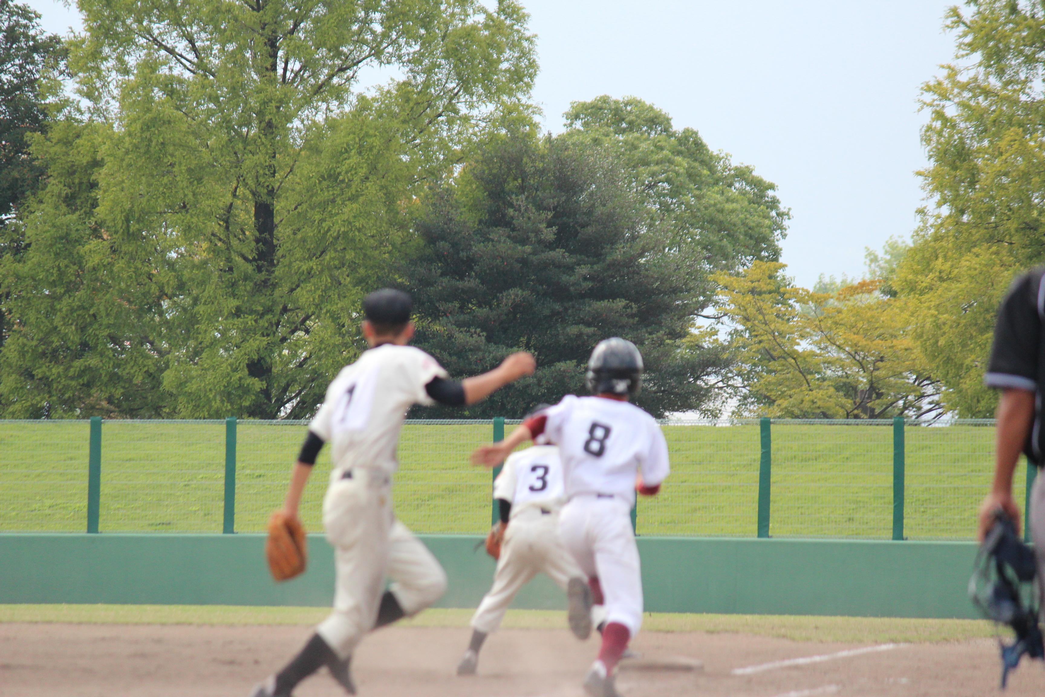 野球 (901)