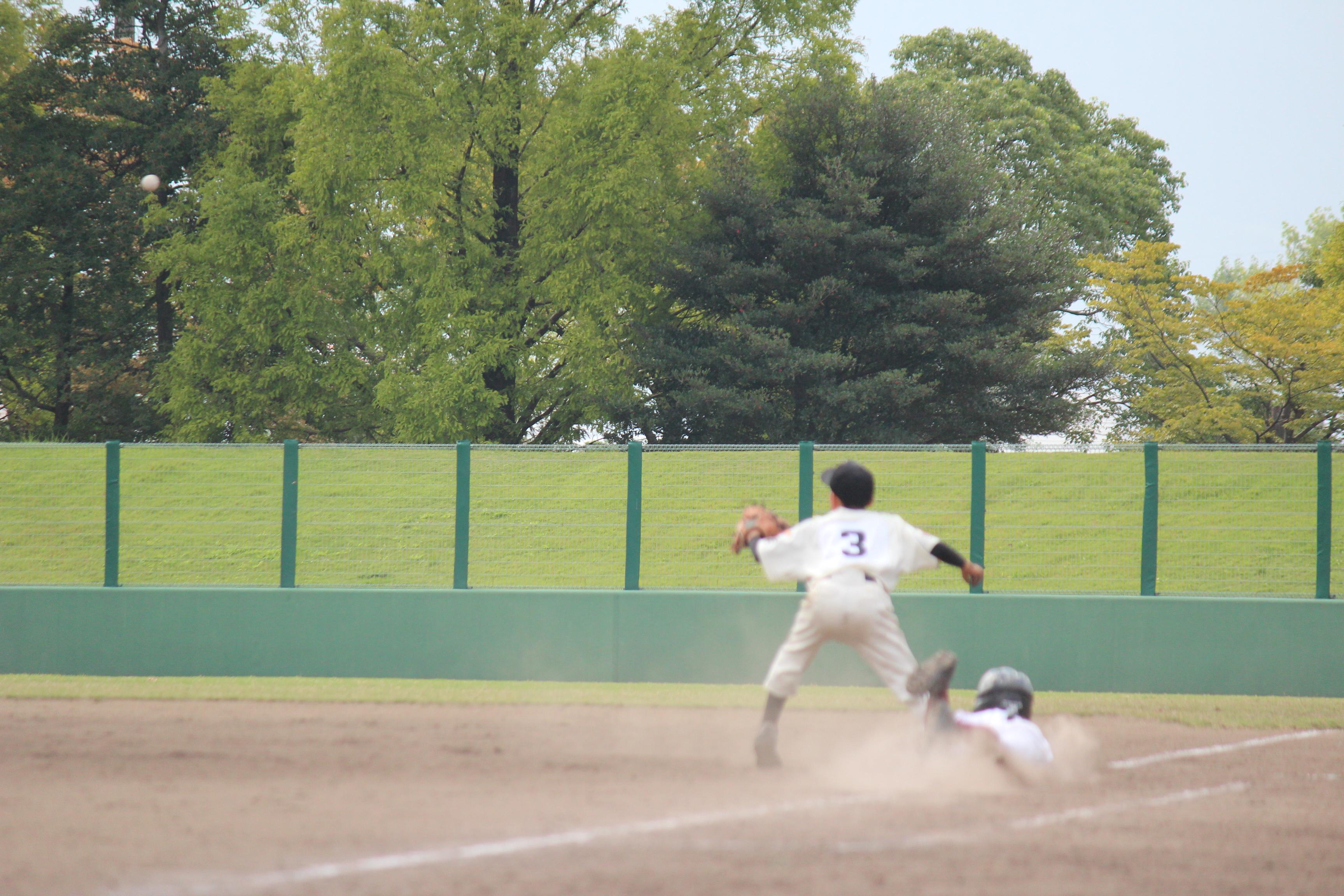 野球 (904)