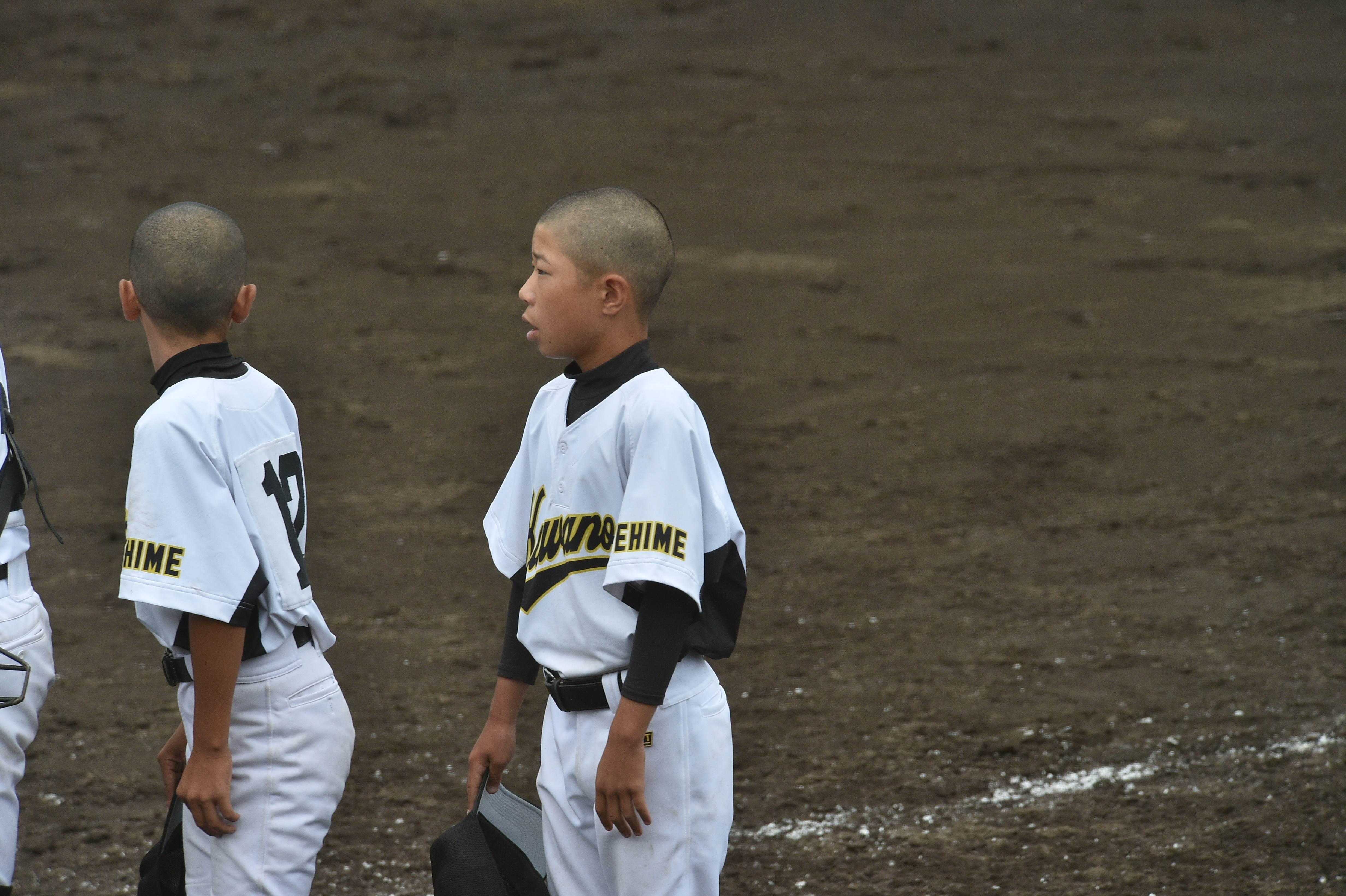 軟式野球 (481)