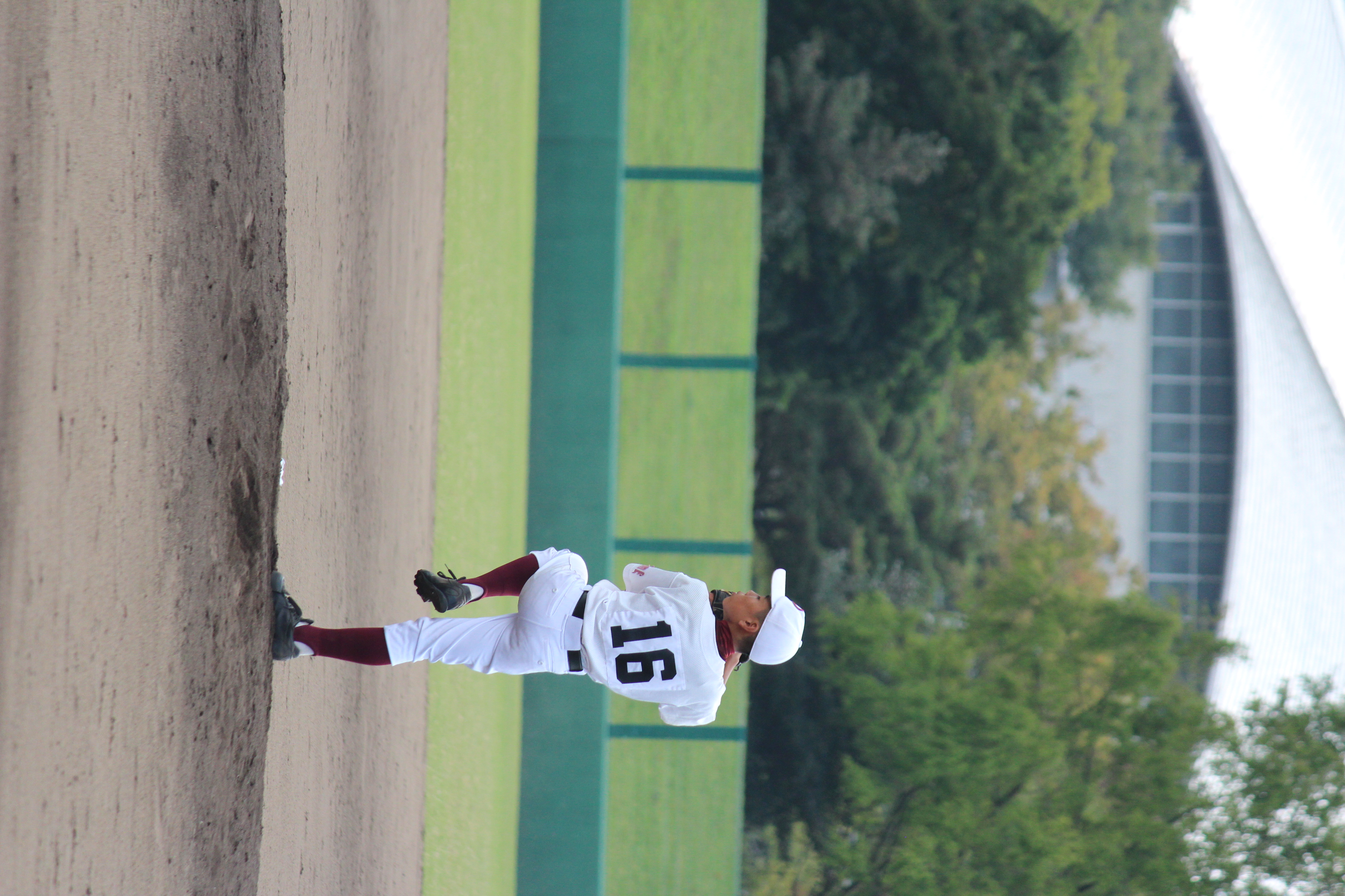 野球 (881)