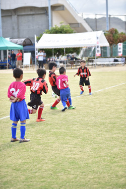 mini_soccer (165)