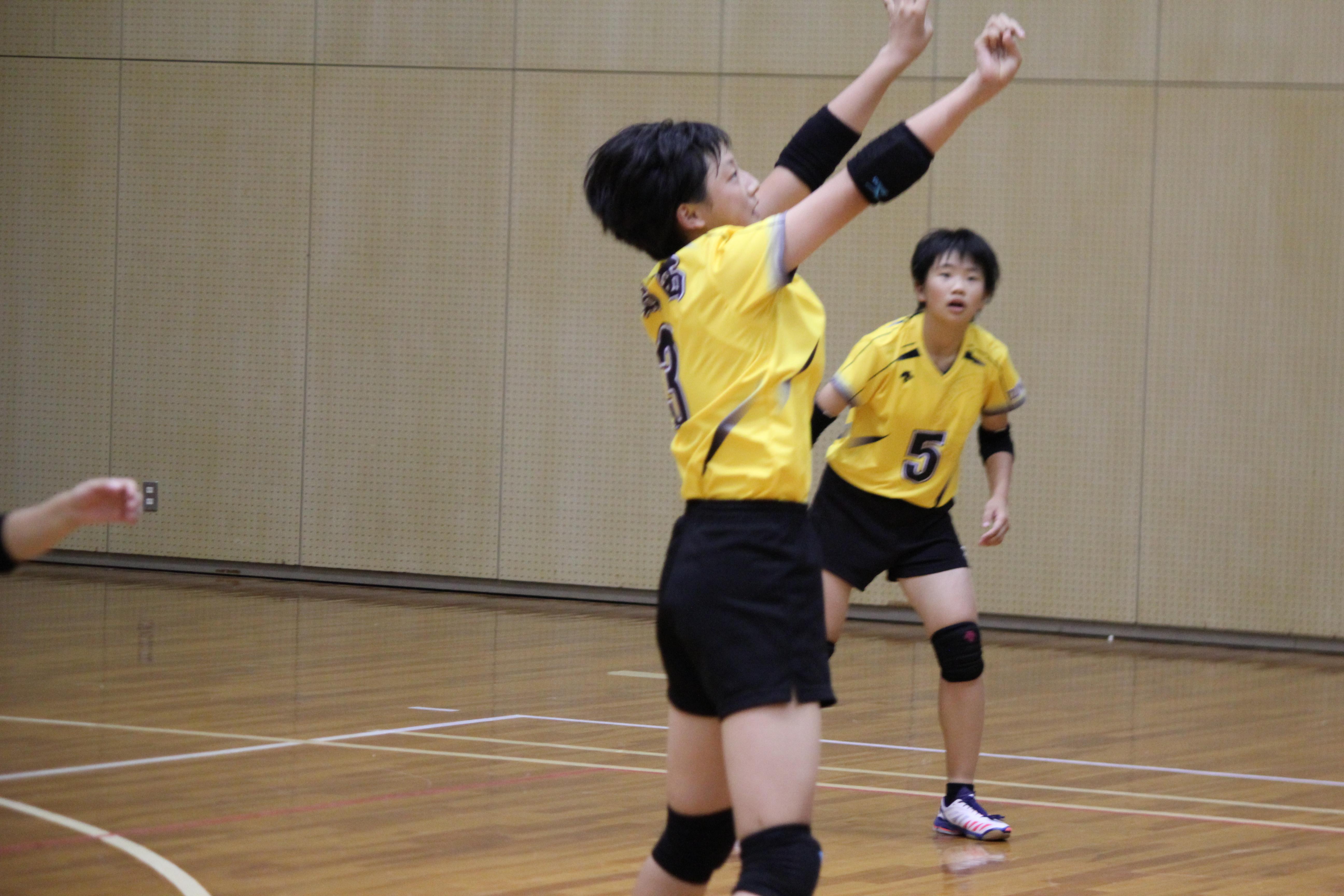 バレーボール (389)