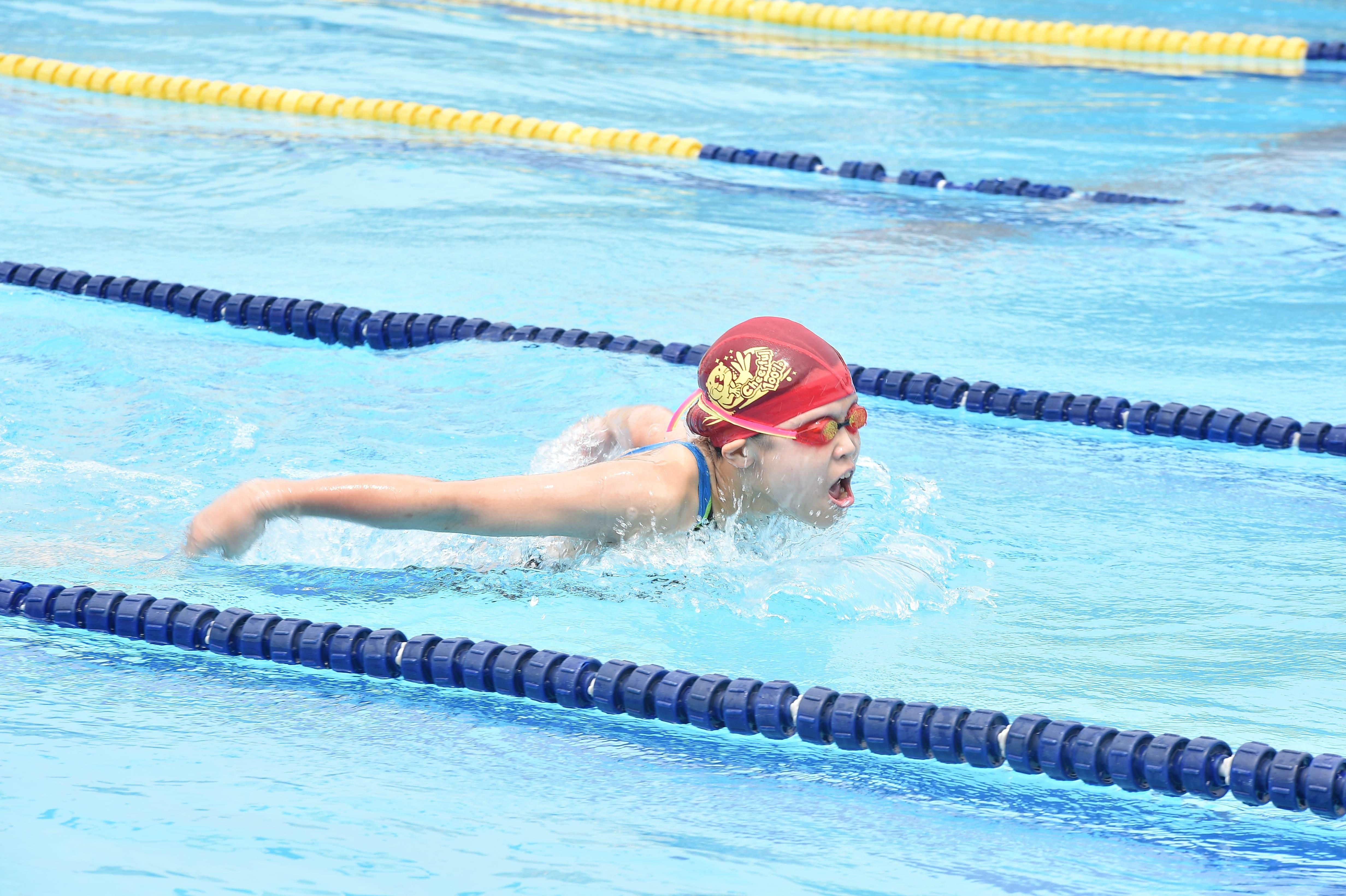 水泳 (25)
