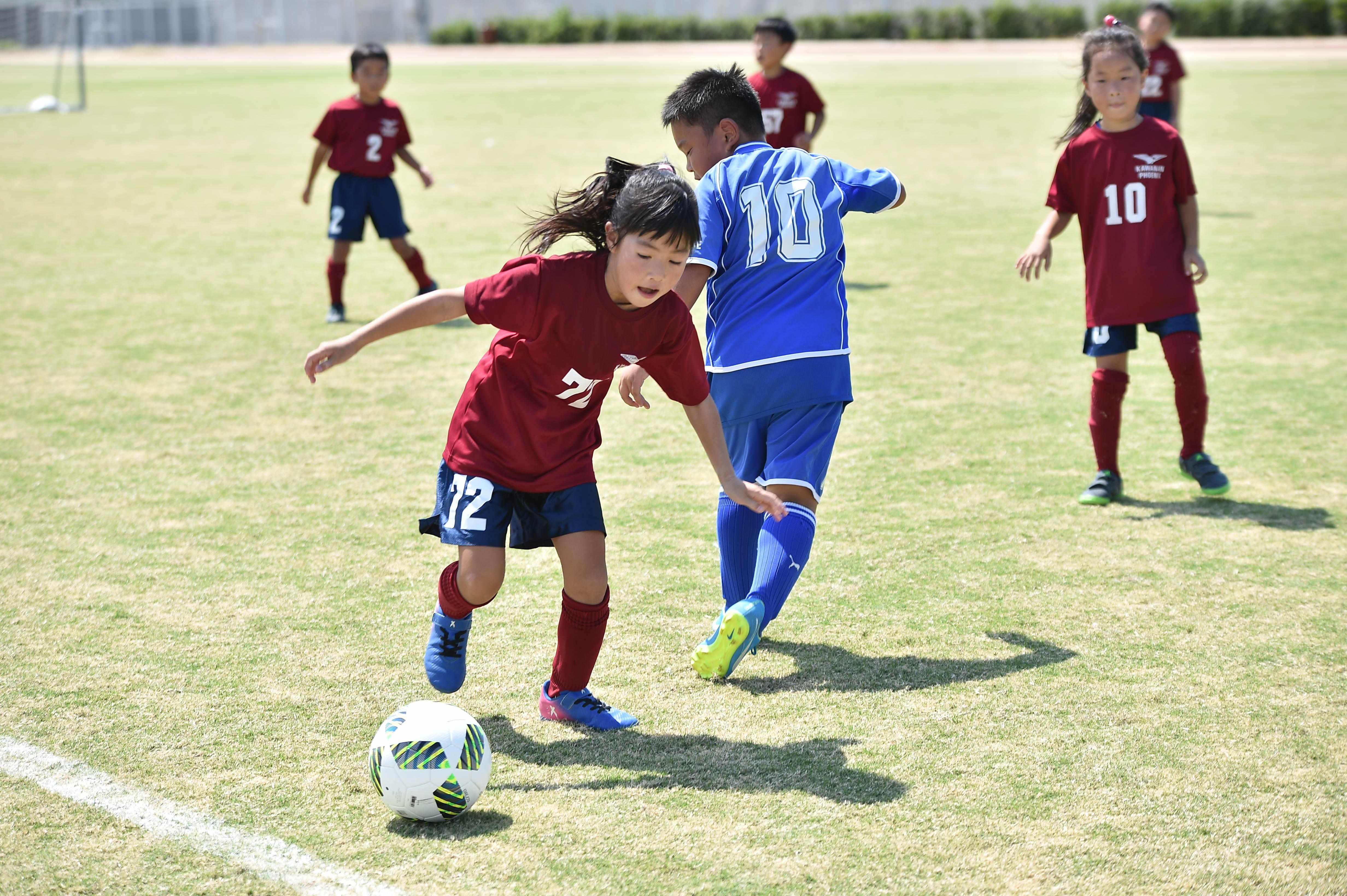 mini_soccer (510)