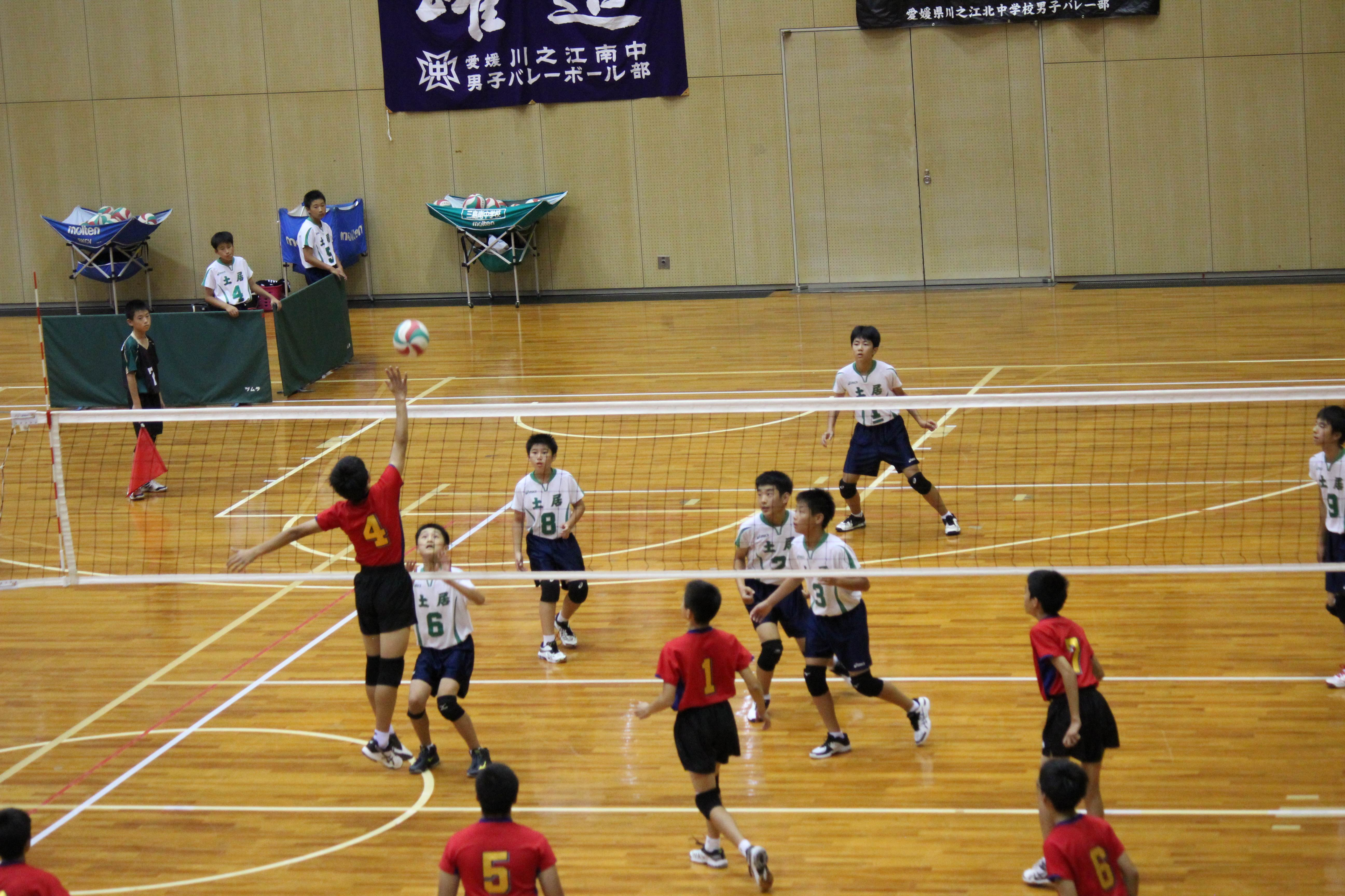 バレーボール (520)