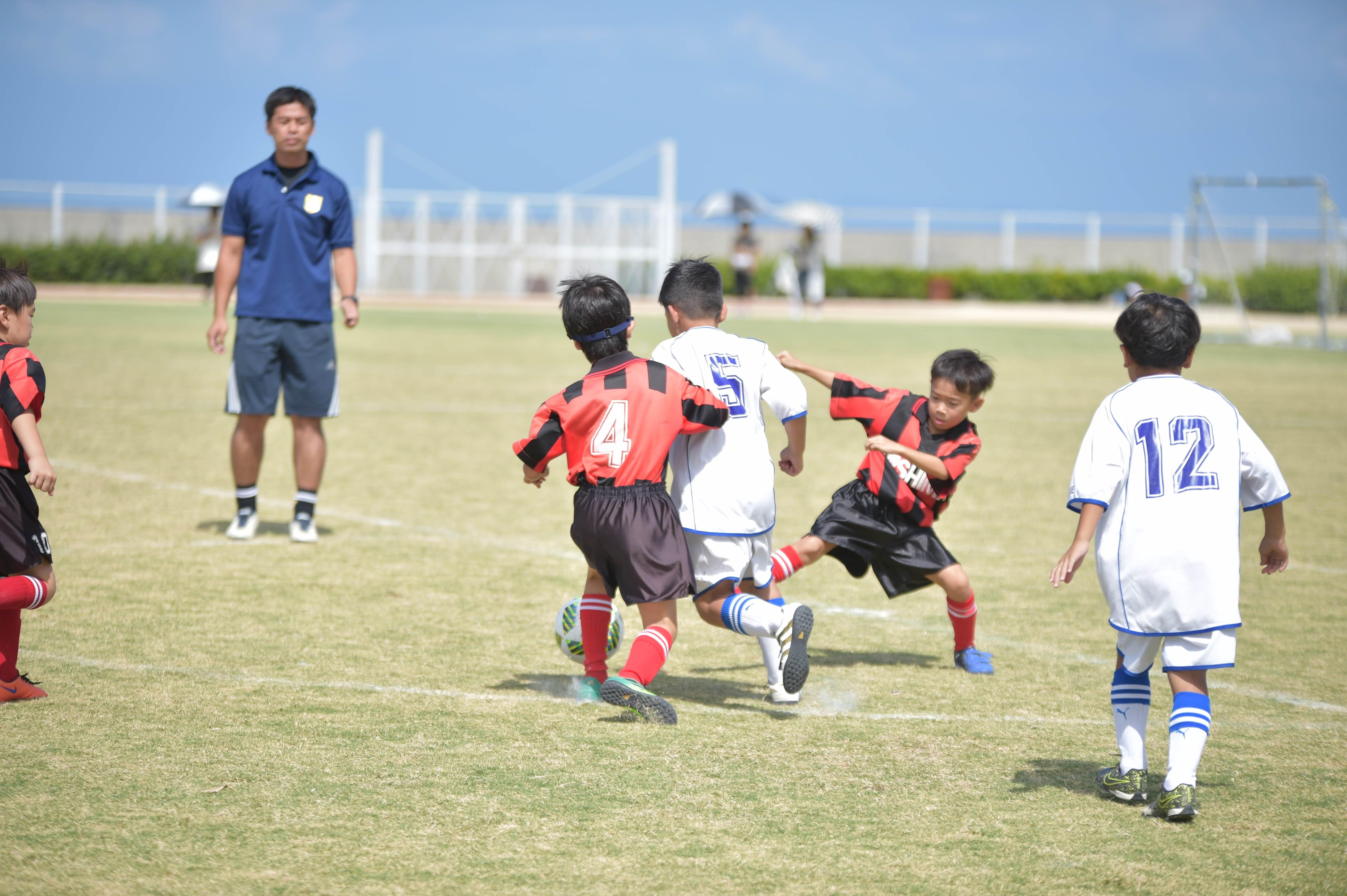 mini_soccer (303)