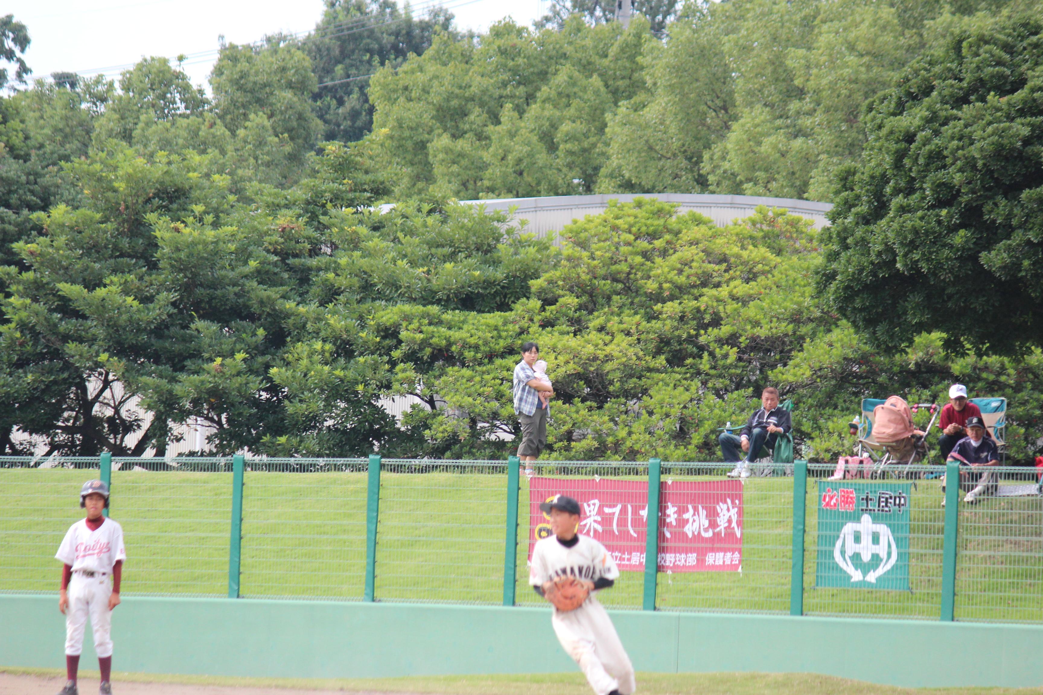 野球 (804)