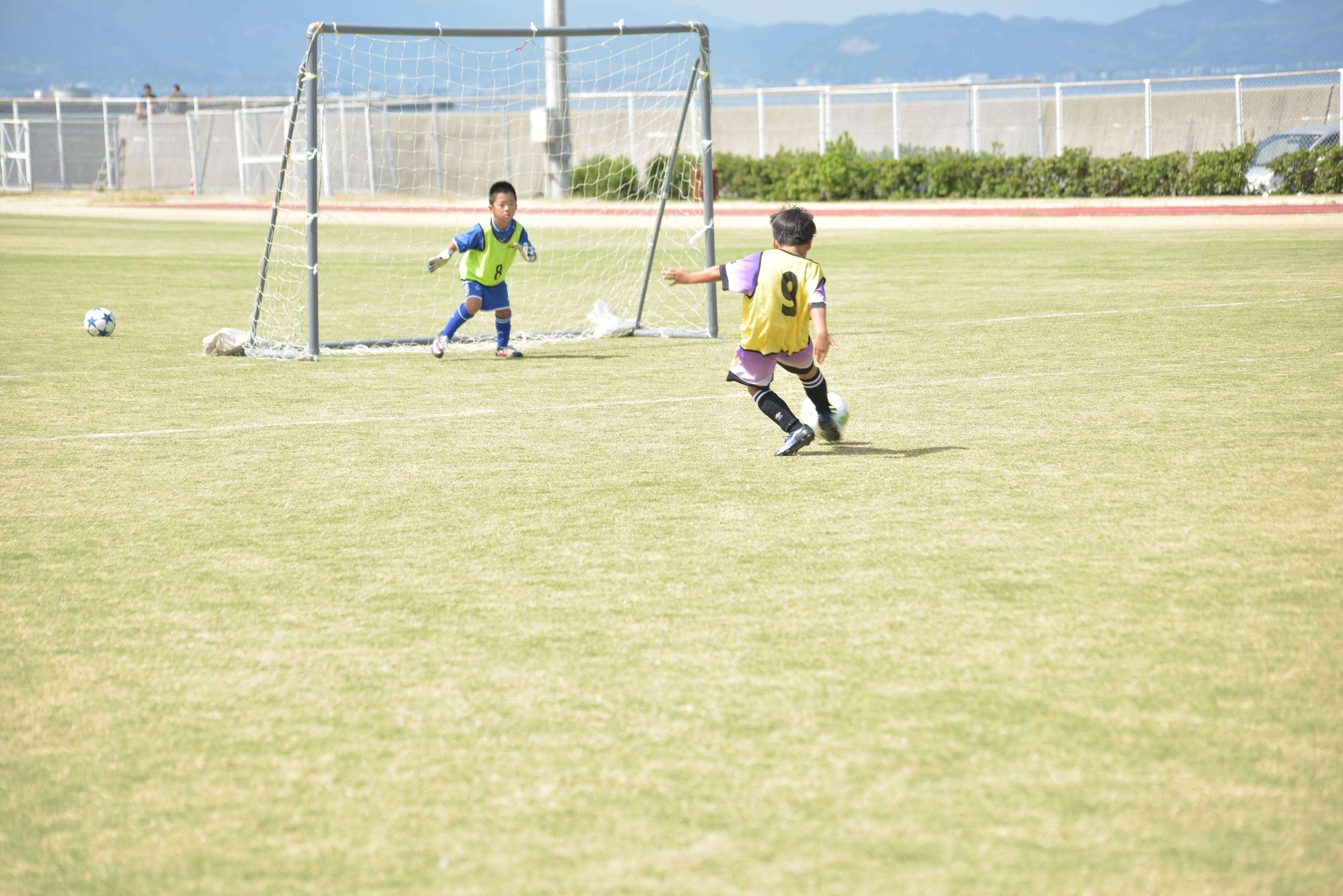mini_soccer (601)