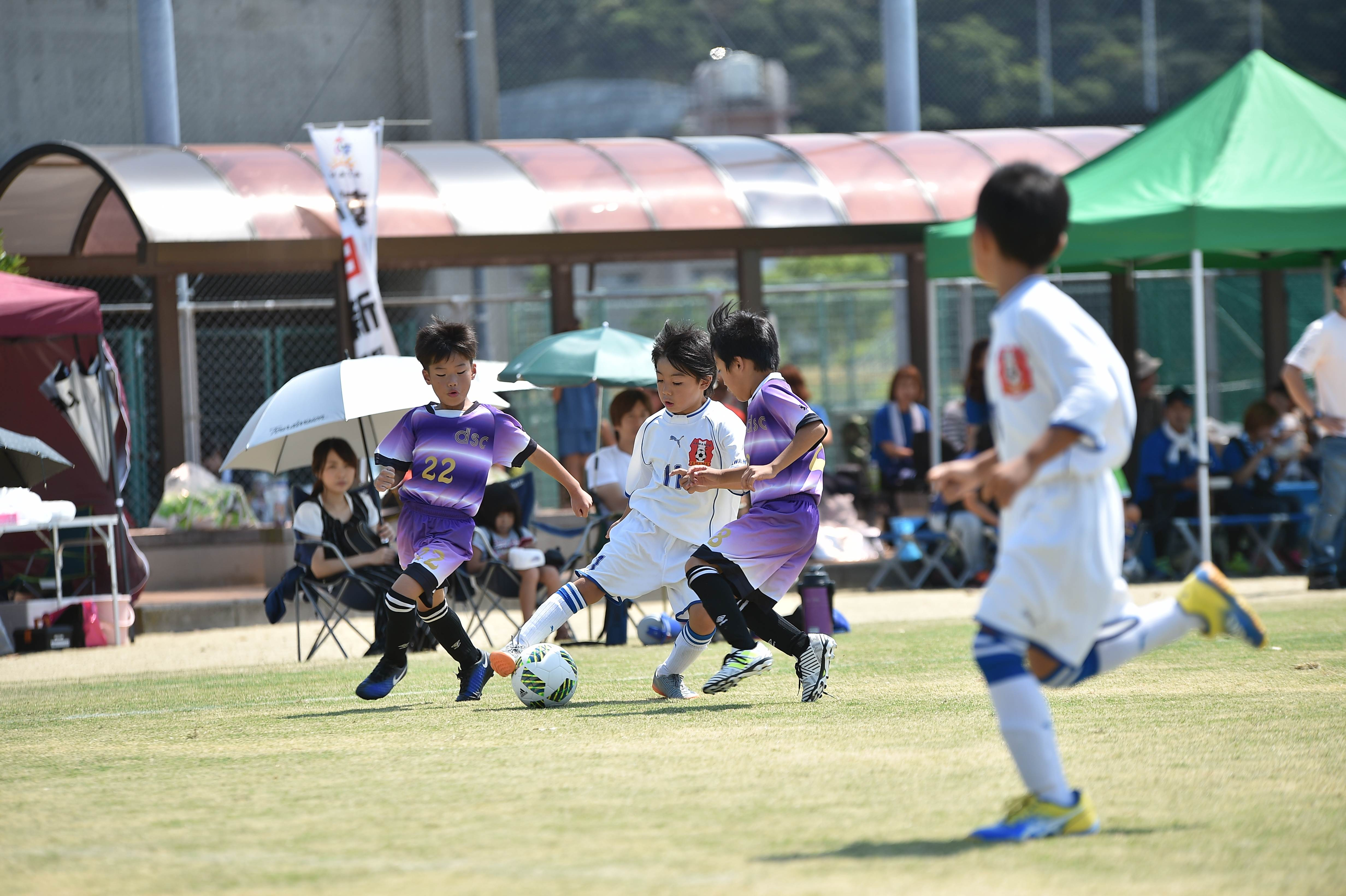 mini_soccer (493)