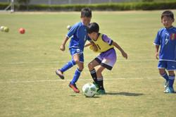 mini_soccer (646)