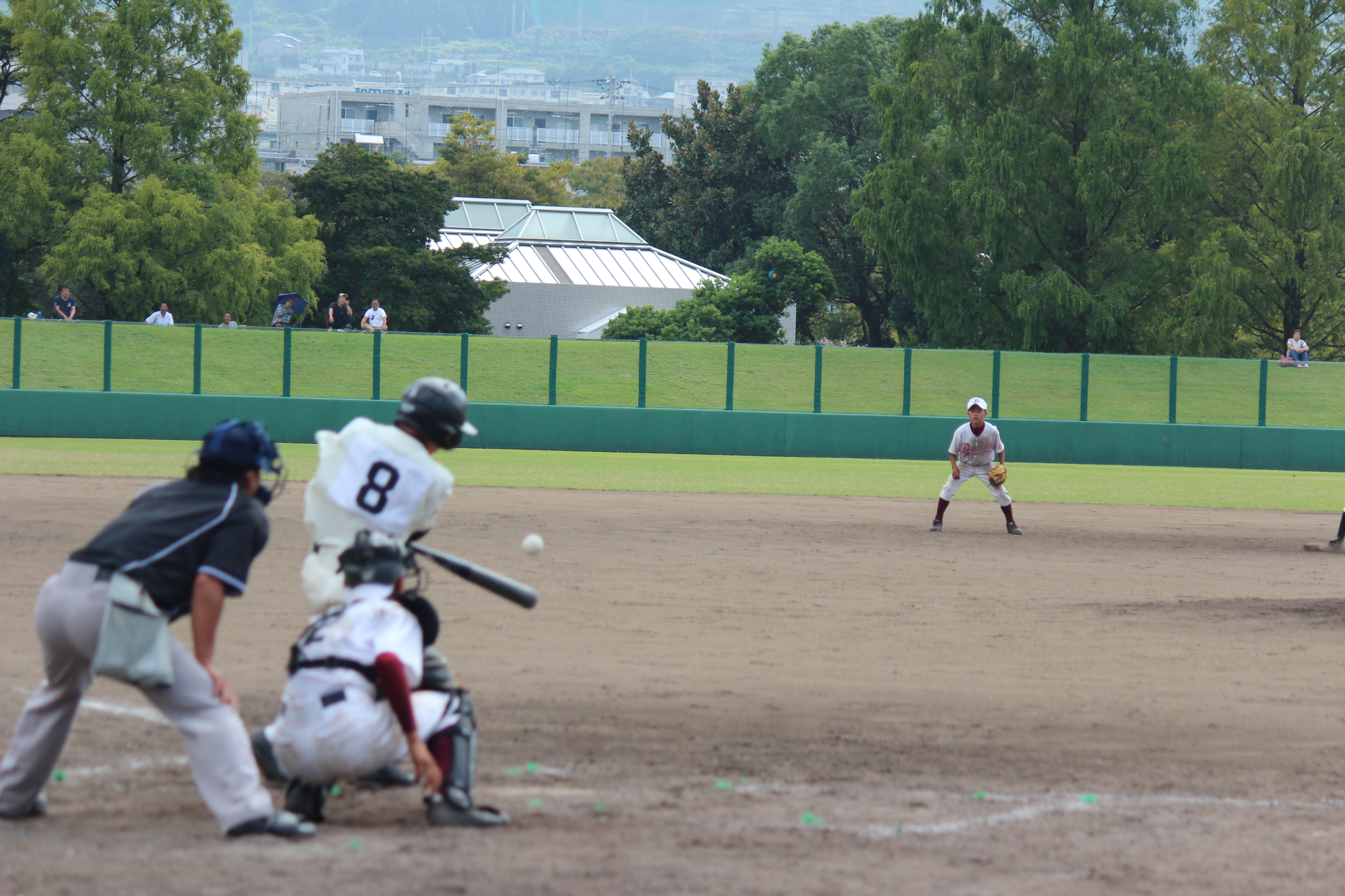 野球 (856)