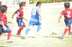 mini_soccer (545)