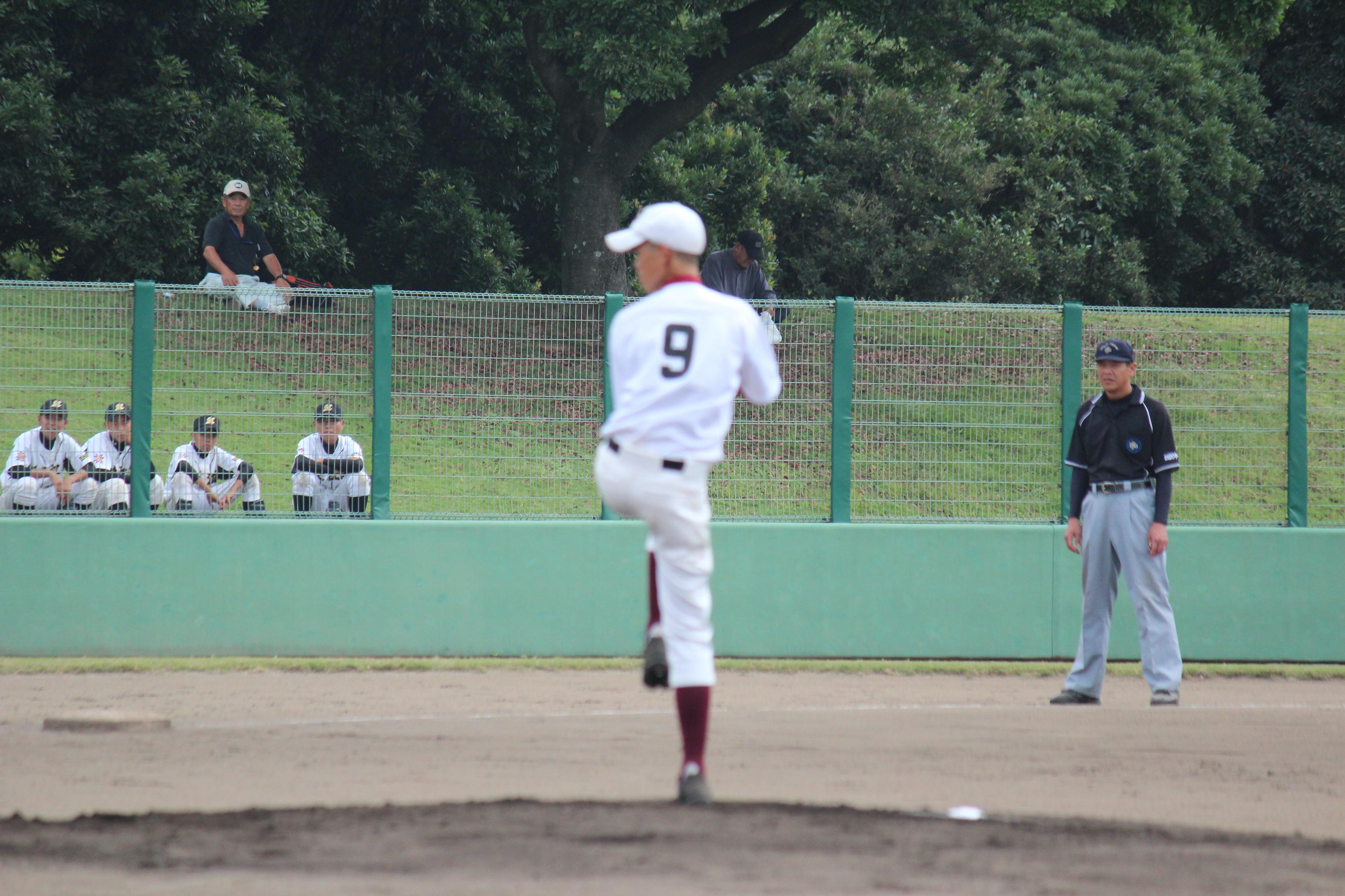 野球 (595)