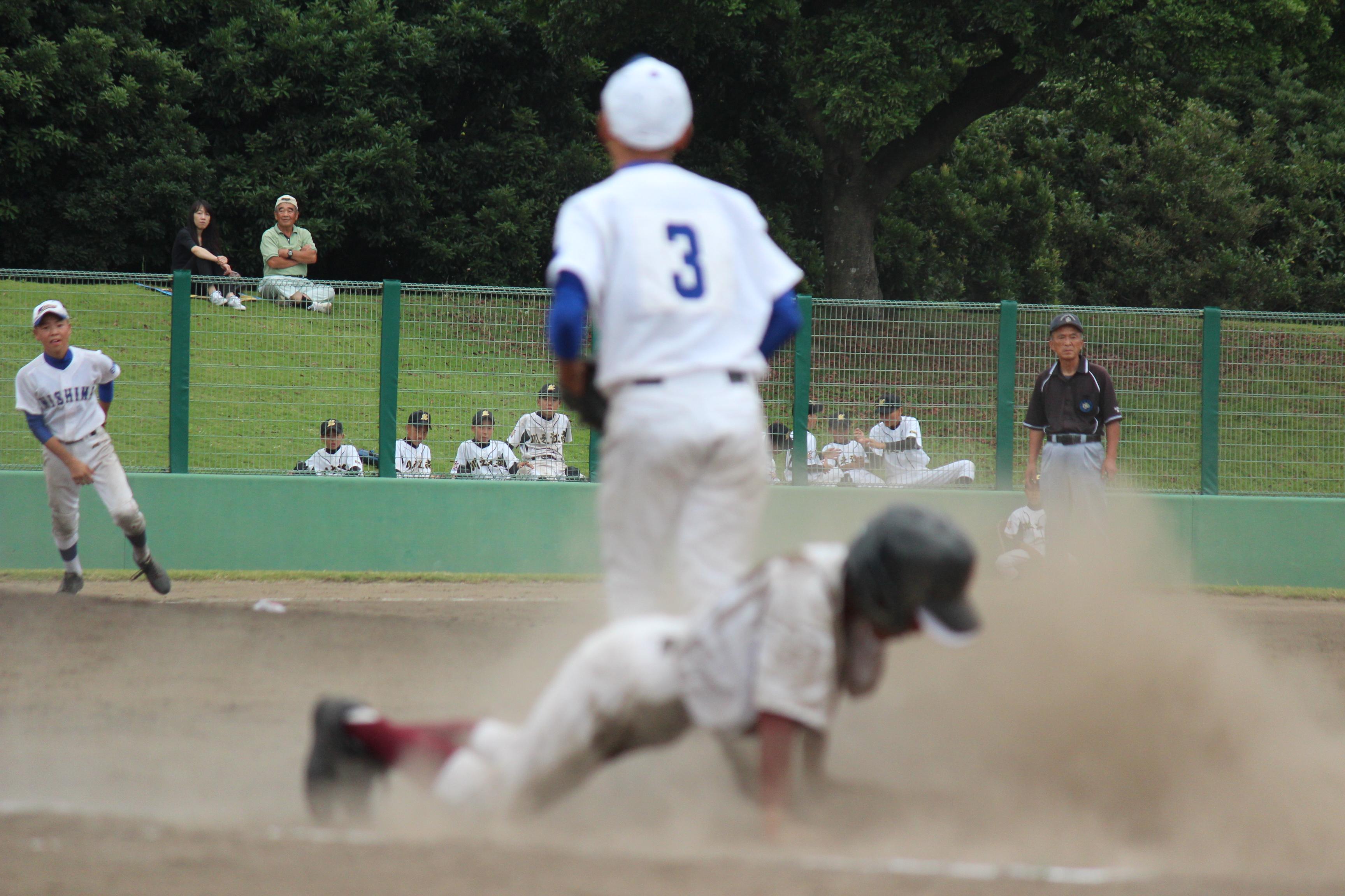 野球 (291)