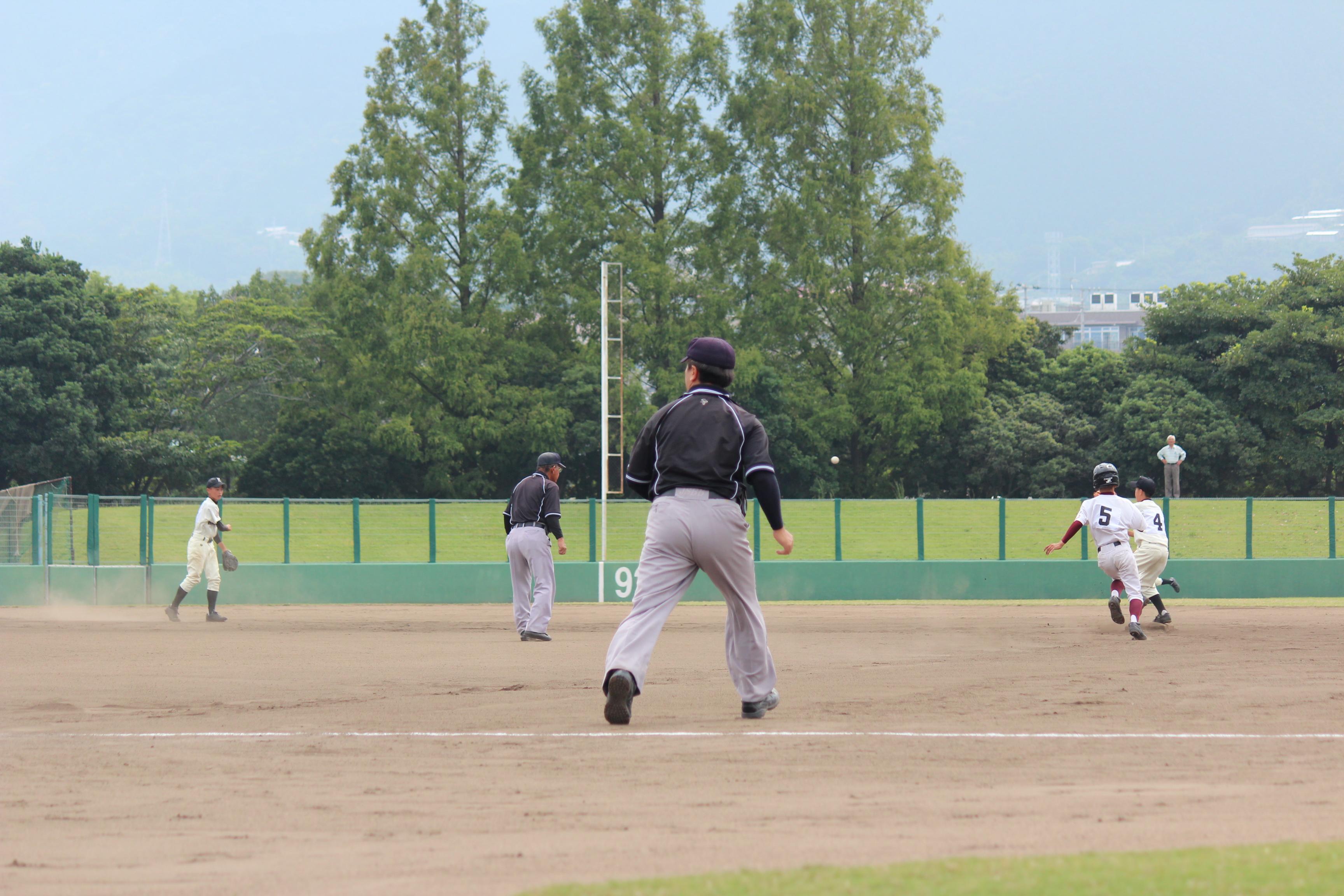 野球 (571)
