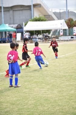 mini_soccer (164)