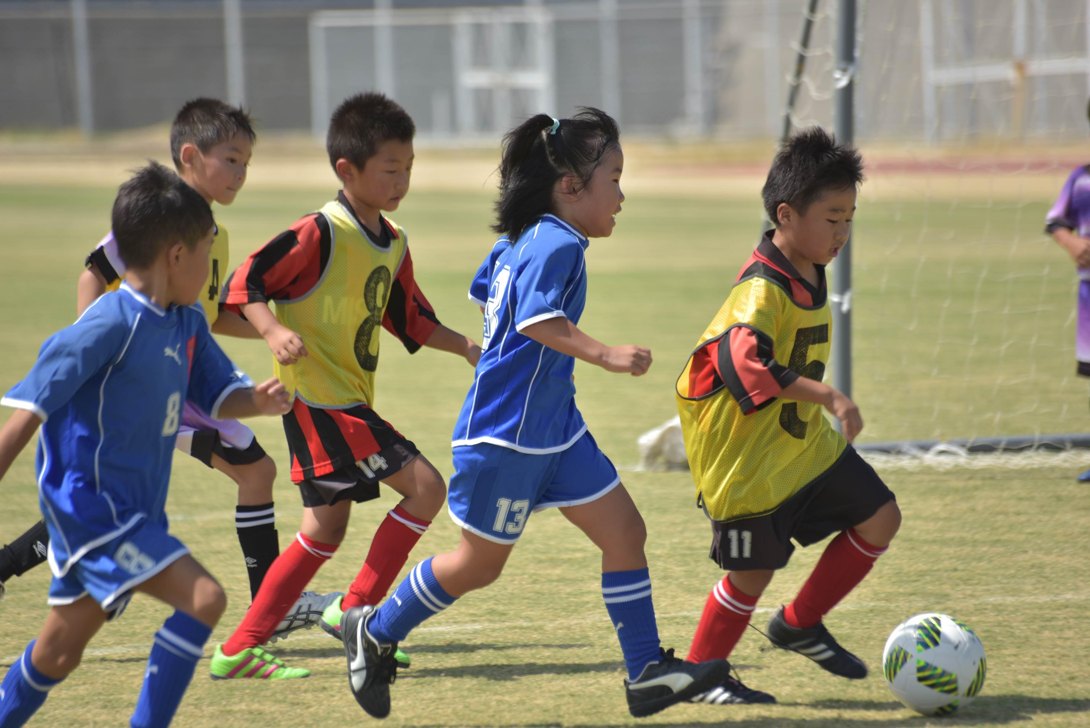 mini_soccer (640)