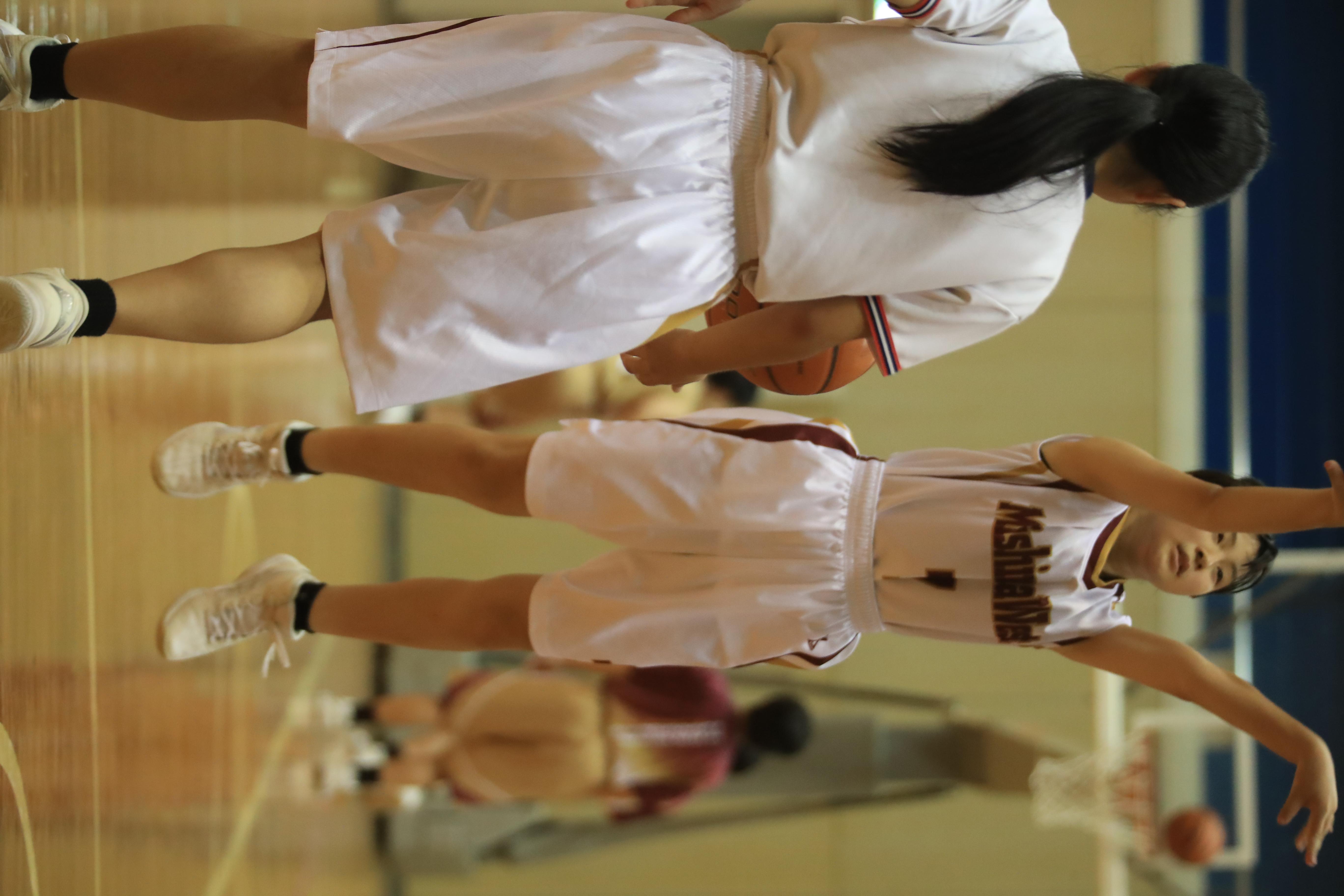 バスケット (976)