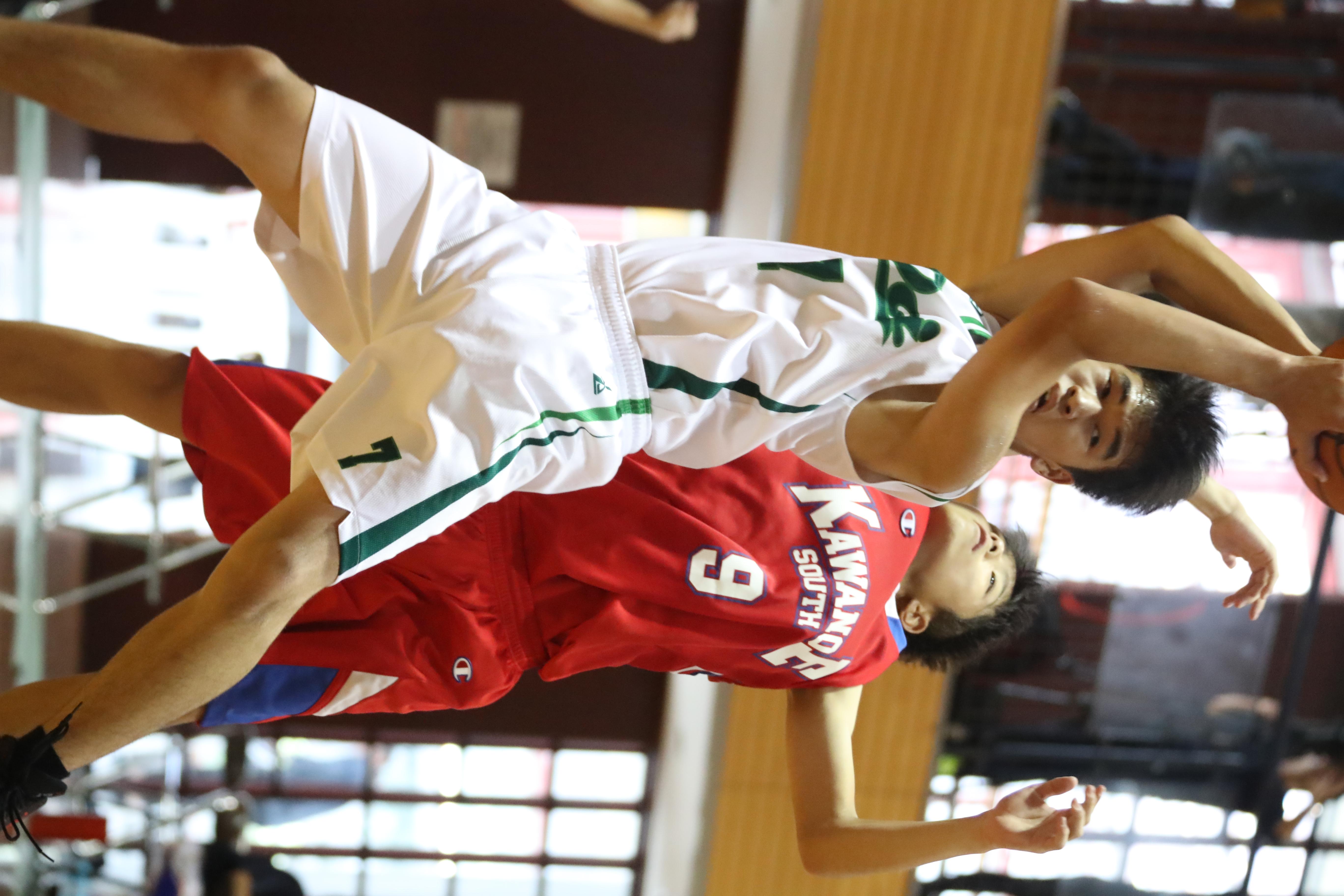 バスケット (440)