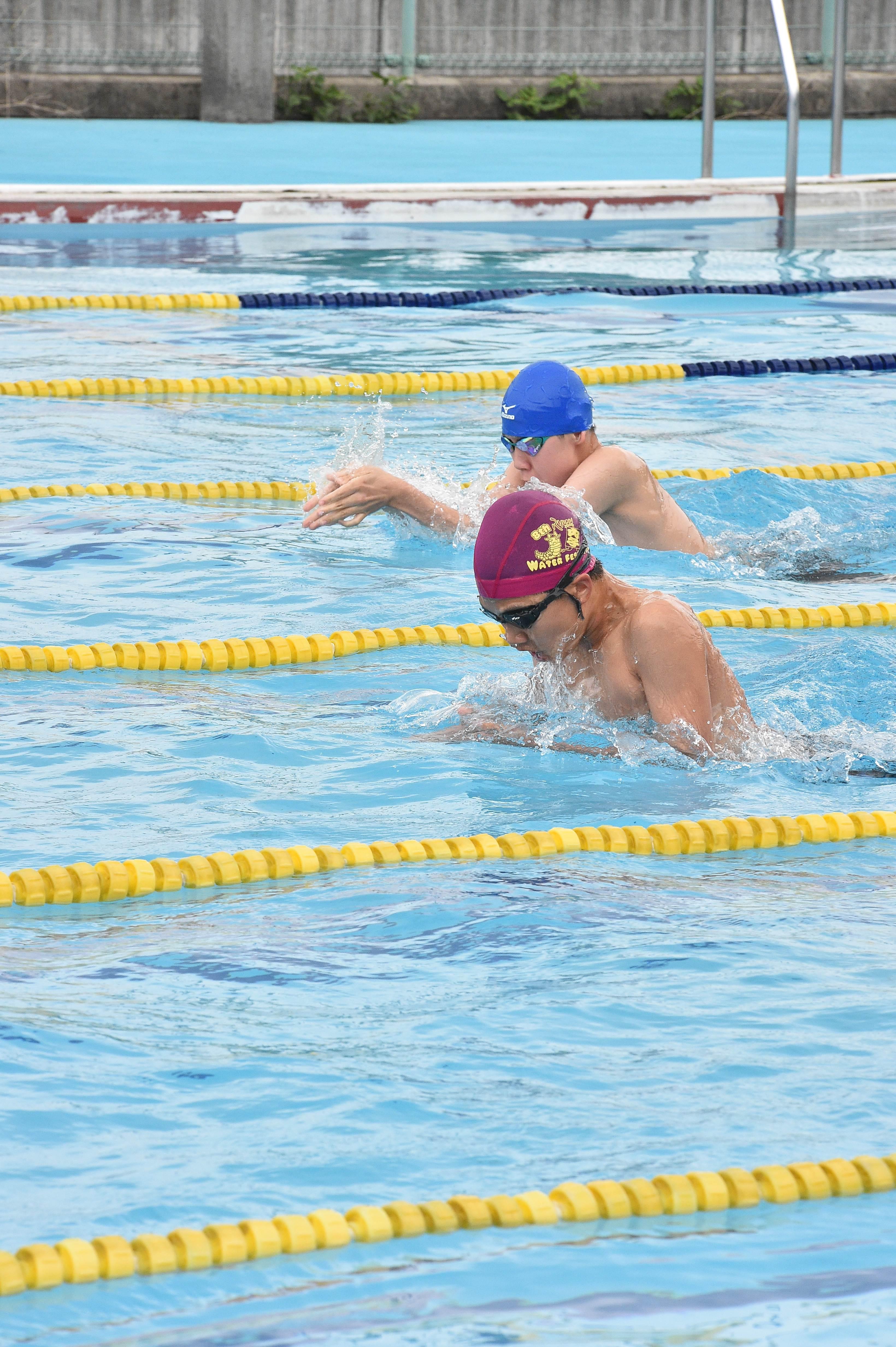 水泳 (117)
