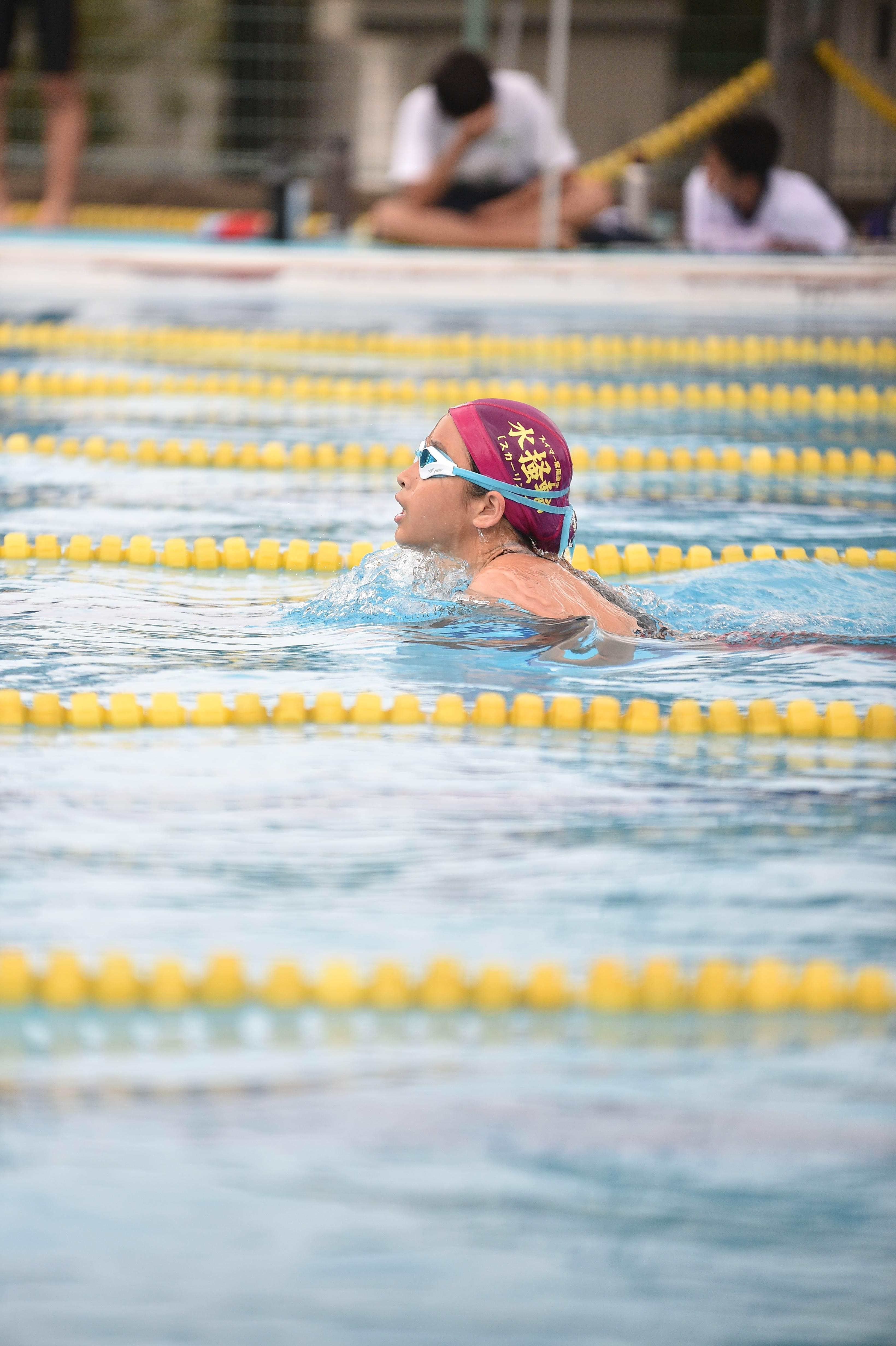 水泳 (115)