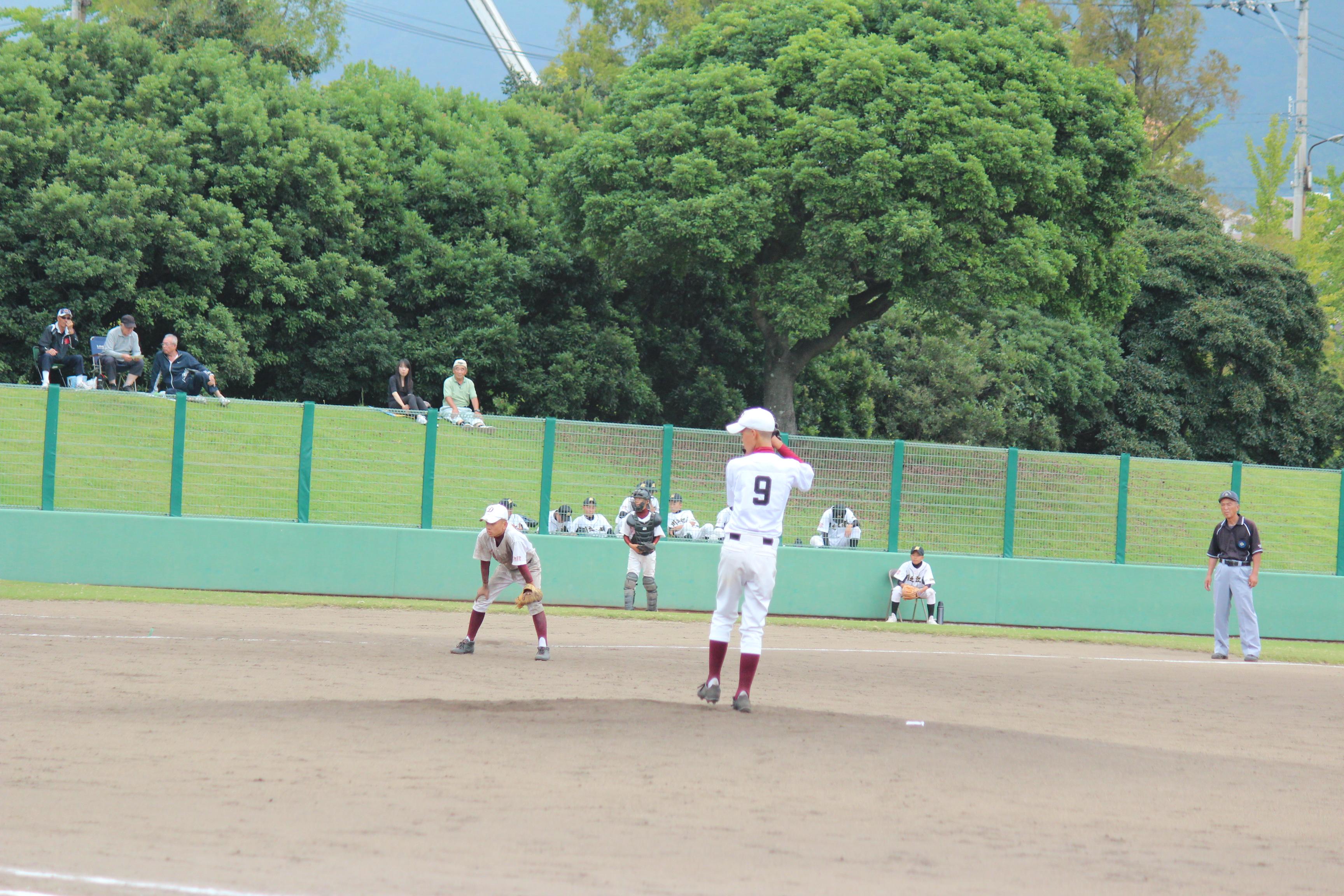 野球 (302)
