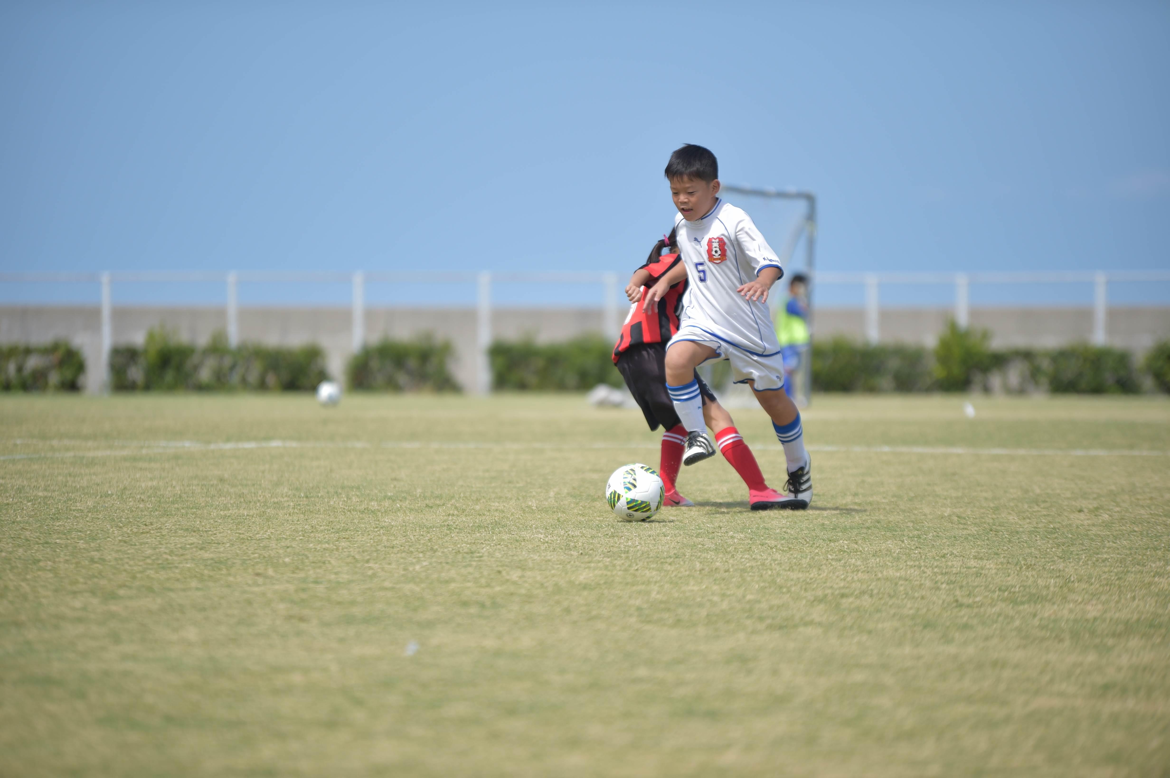 mini_soccer (310)