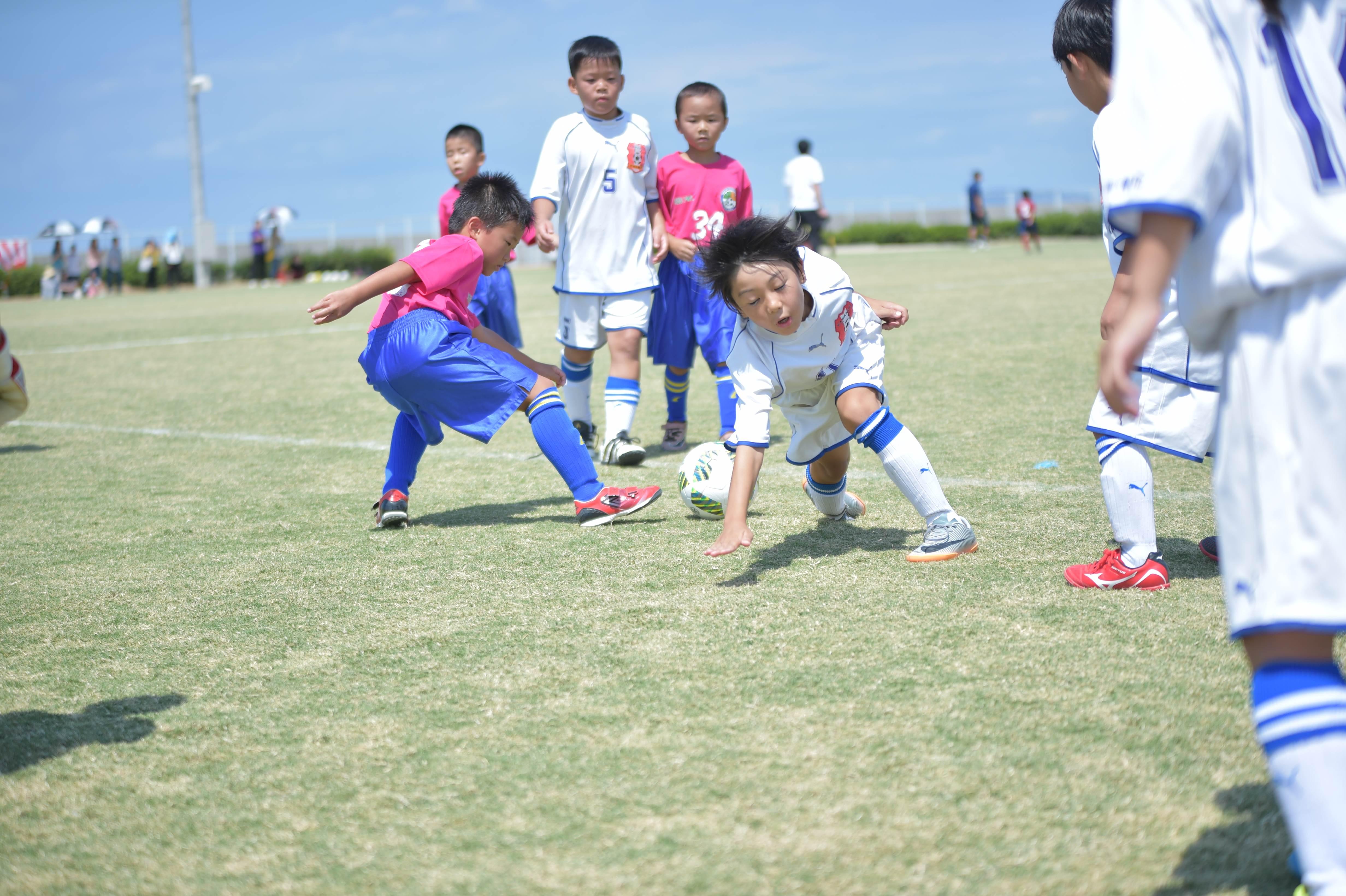 mini_soccer (395)