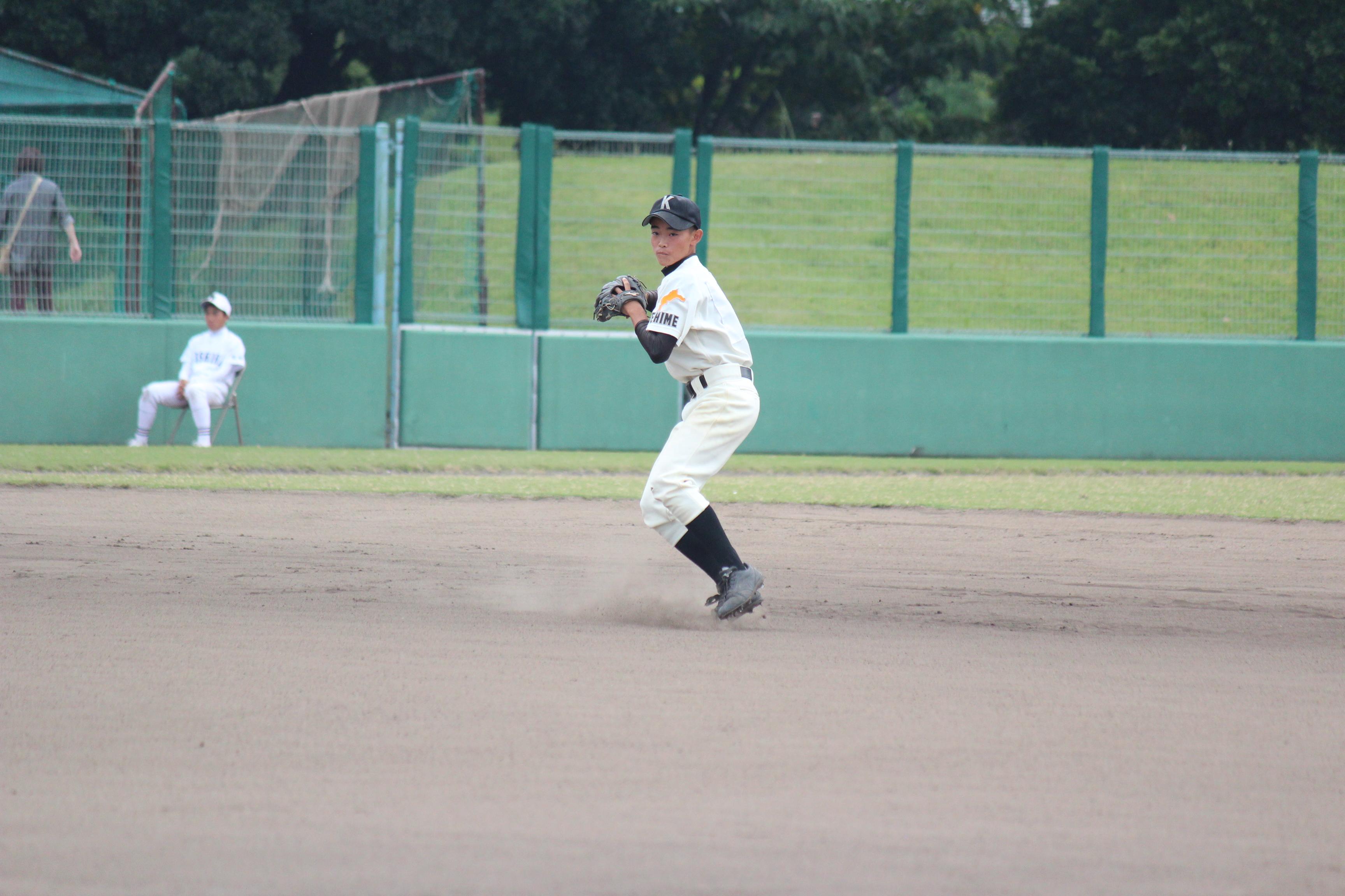 野球 (528)