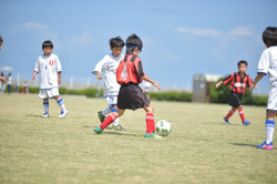 mini_soccer (339)