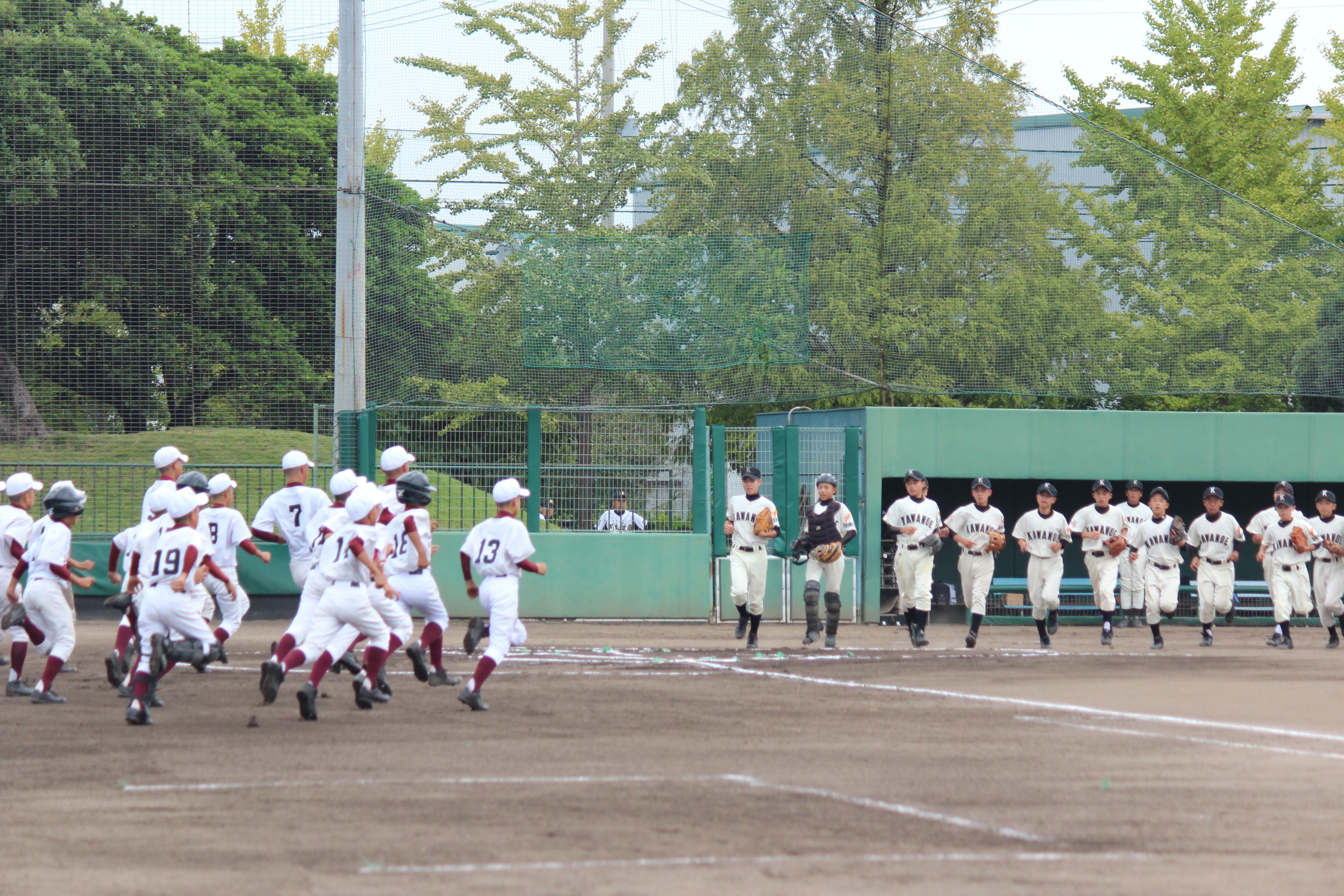 野球 (521)