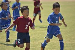 mini_soccer (680)