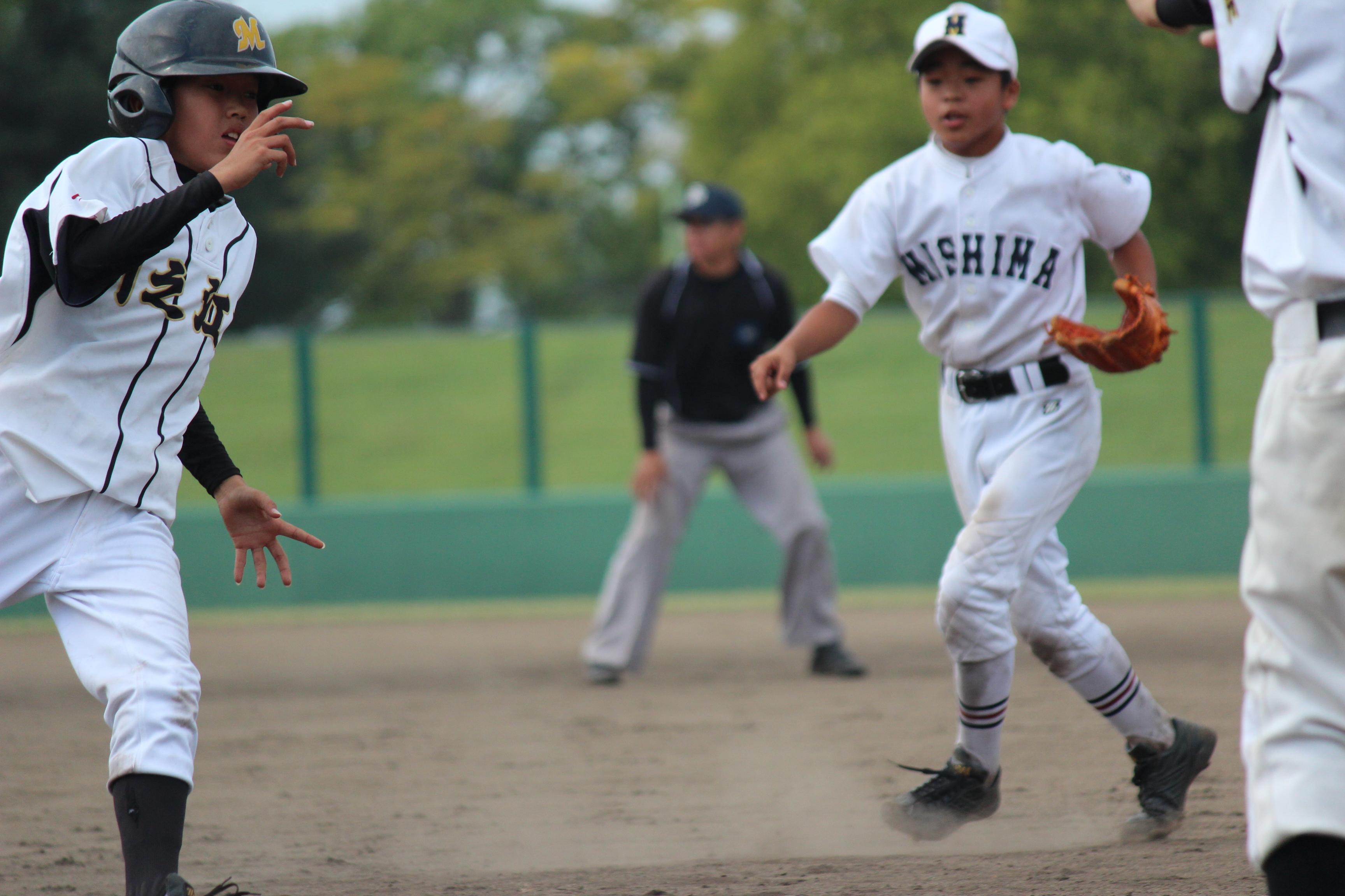 野球 (486)