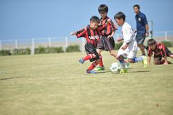 mini_soccer (338)