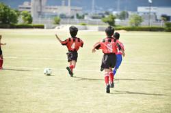 mini_soccer (196)
